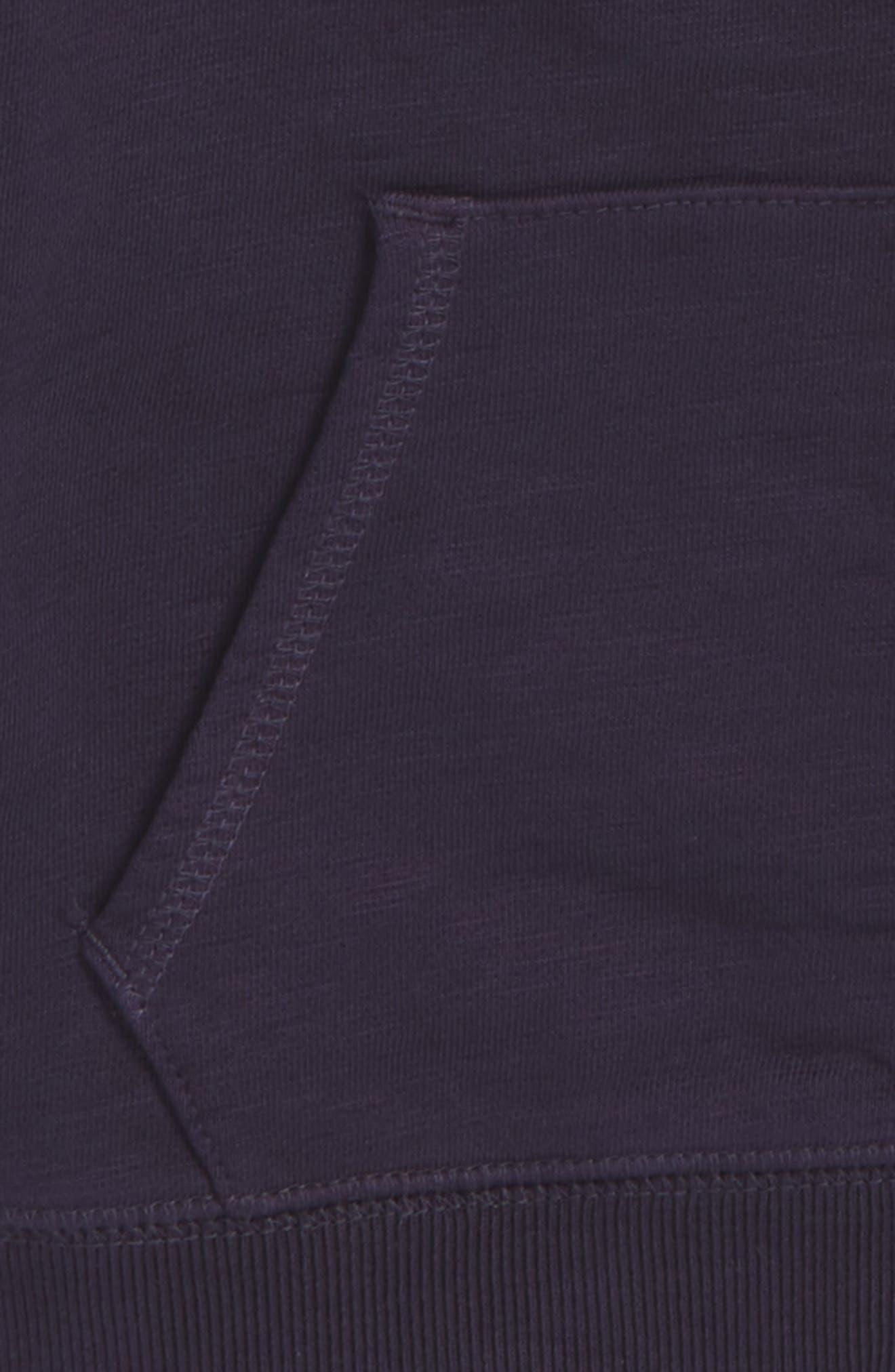 Full Zip Hoodie,                             Alternate thumbnail 2, color,                             Ultra Marine Blue