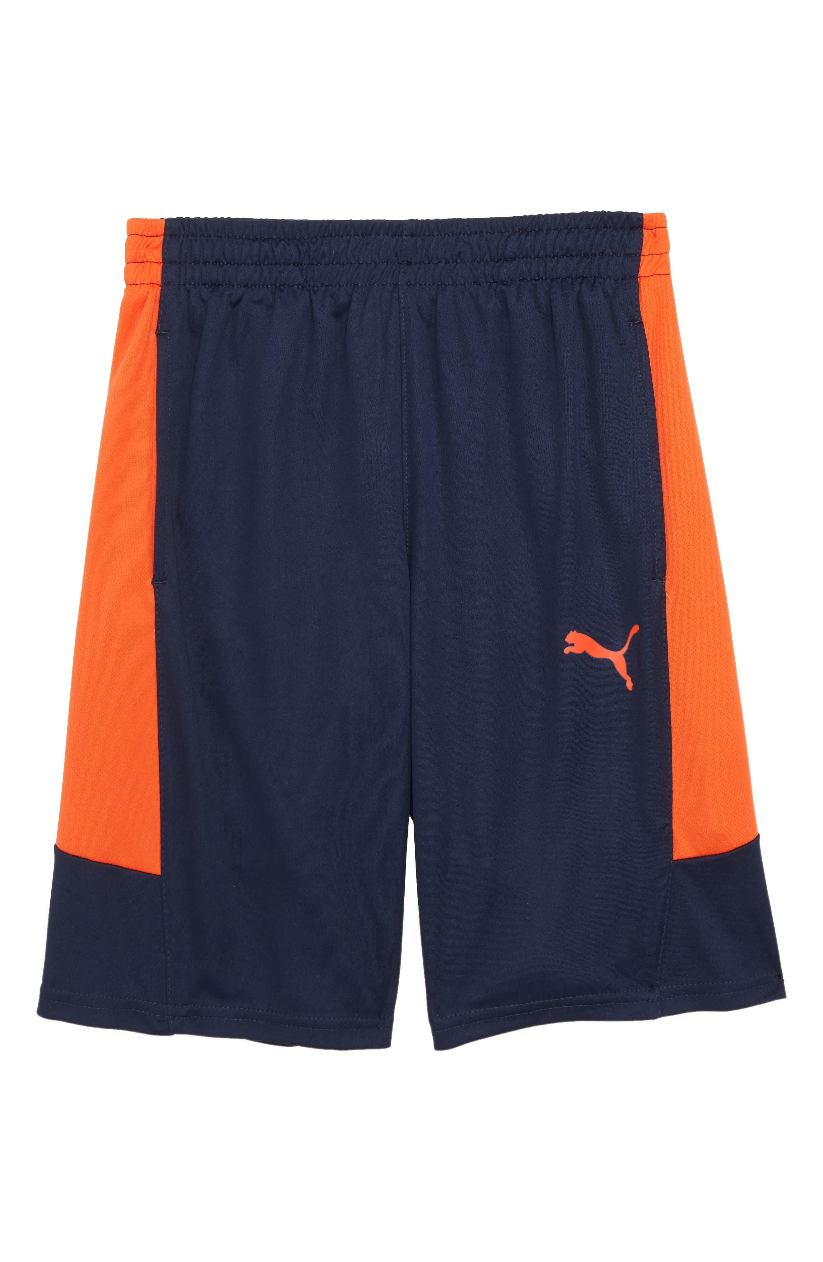 Performance Colorblock Shorts,                         Main,                         color, Pea Coat