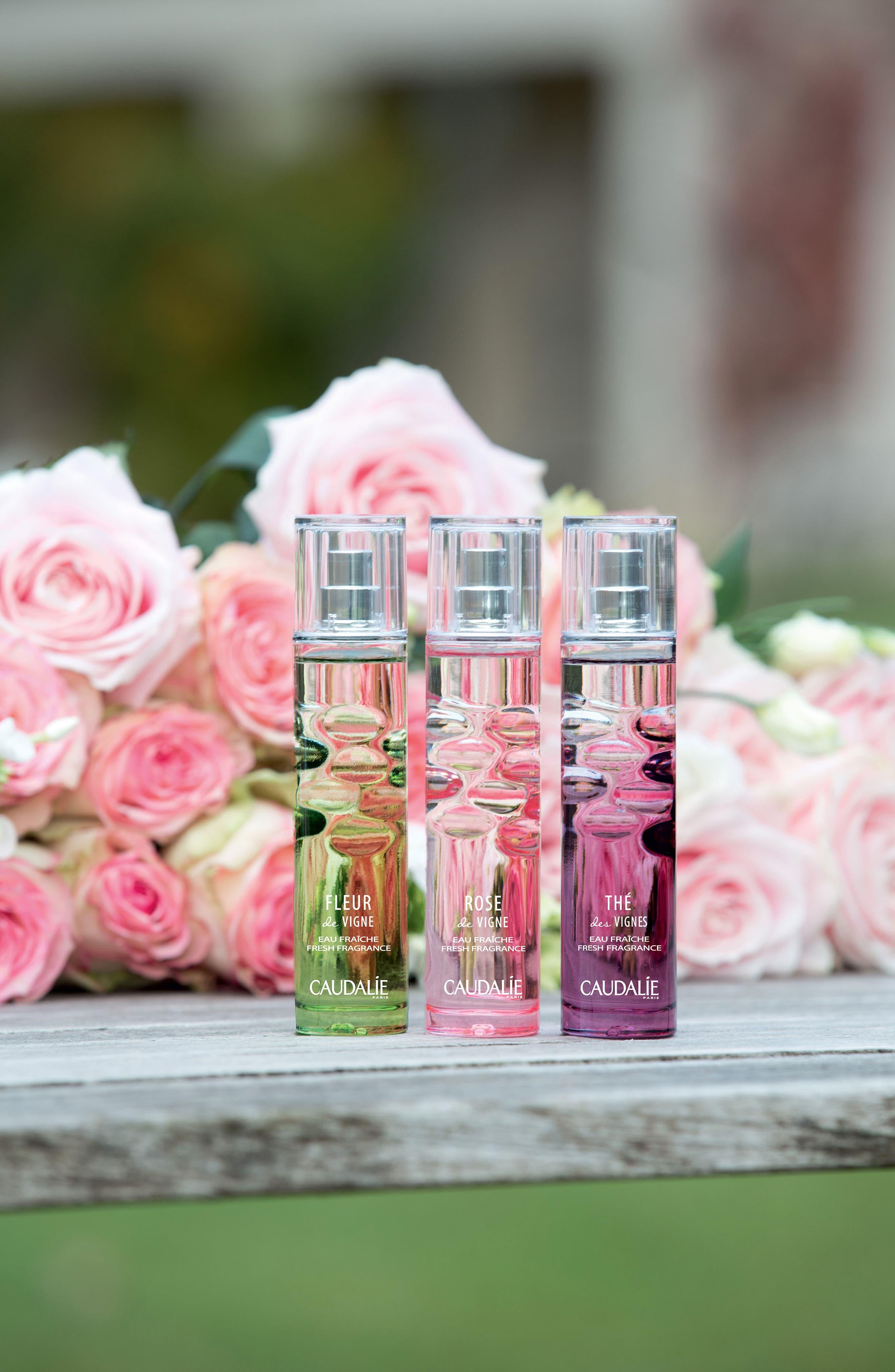 Rose de Vigne Fresh Fragrance,                             Alternate thumbnail 4, color,                             No Color