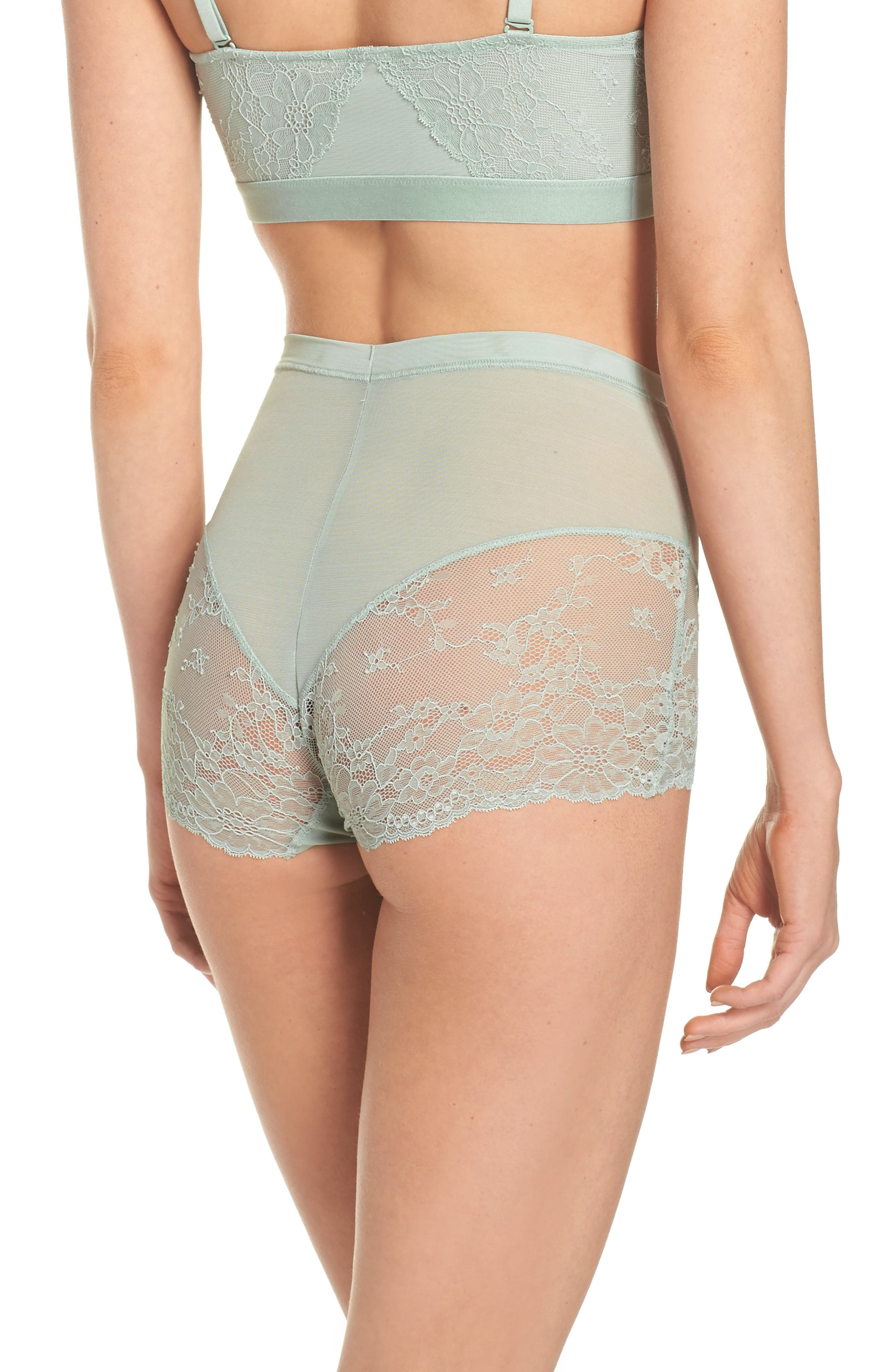 Spotlight On Lace Briefs,                             Alternate thumbnail 2, color,                             Seafoam Green