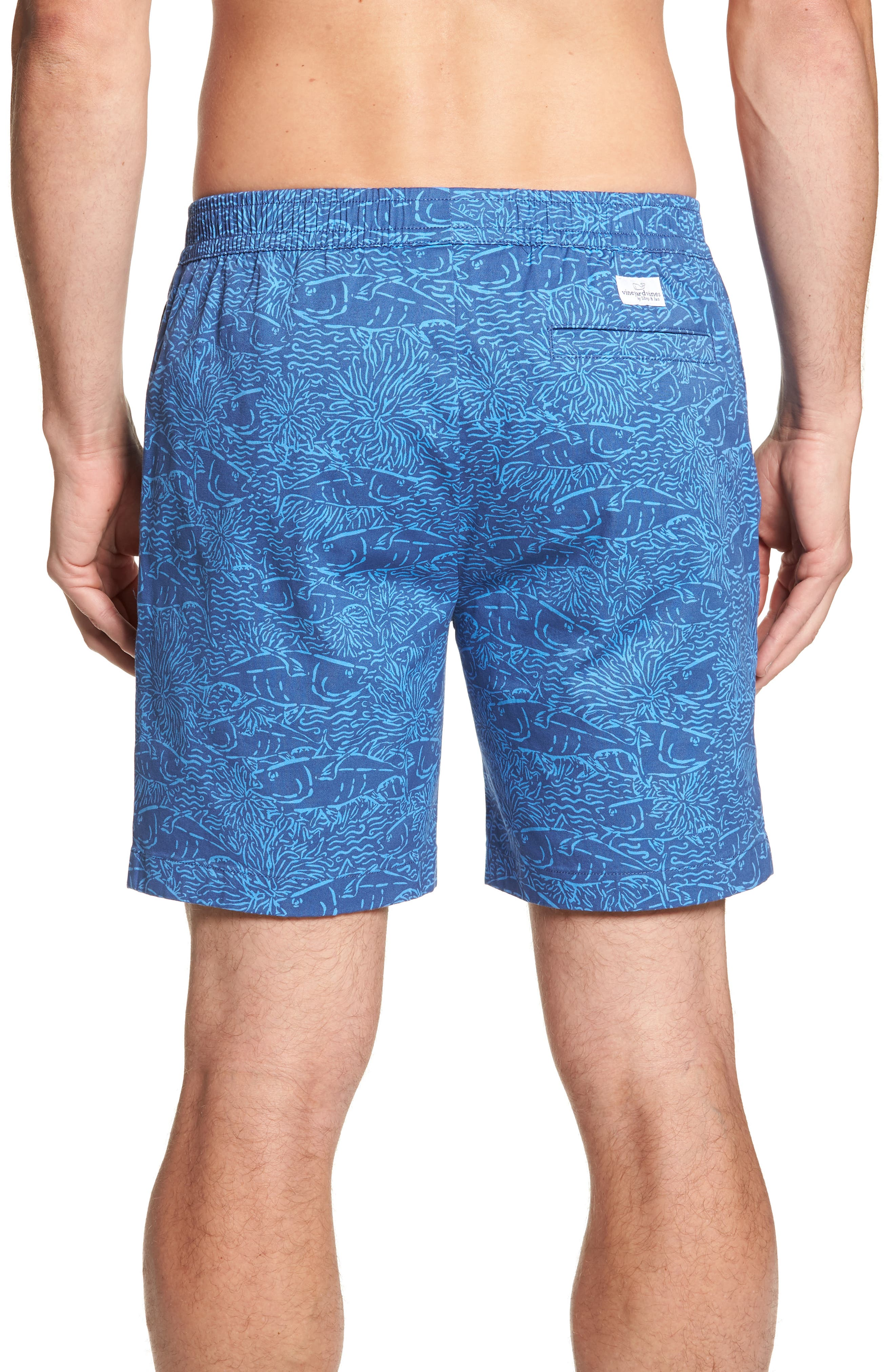 Jetty Print Stretch Cotton Shorts,                             Alternate thumbnail 2, color,                             Moonshine