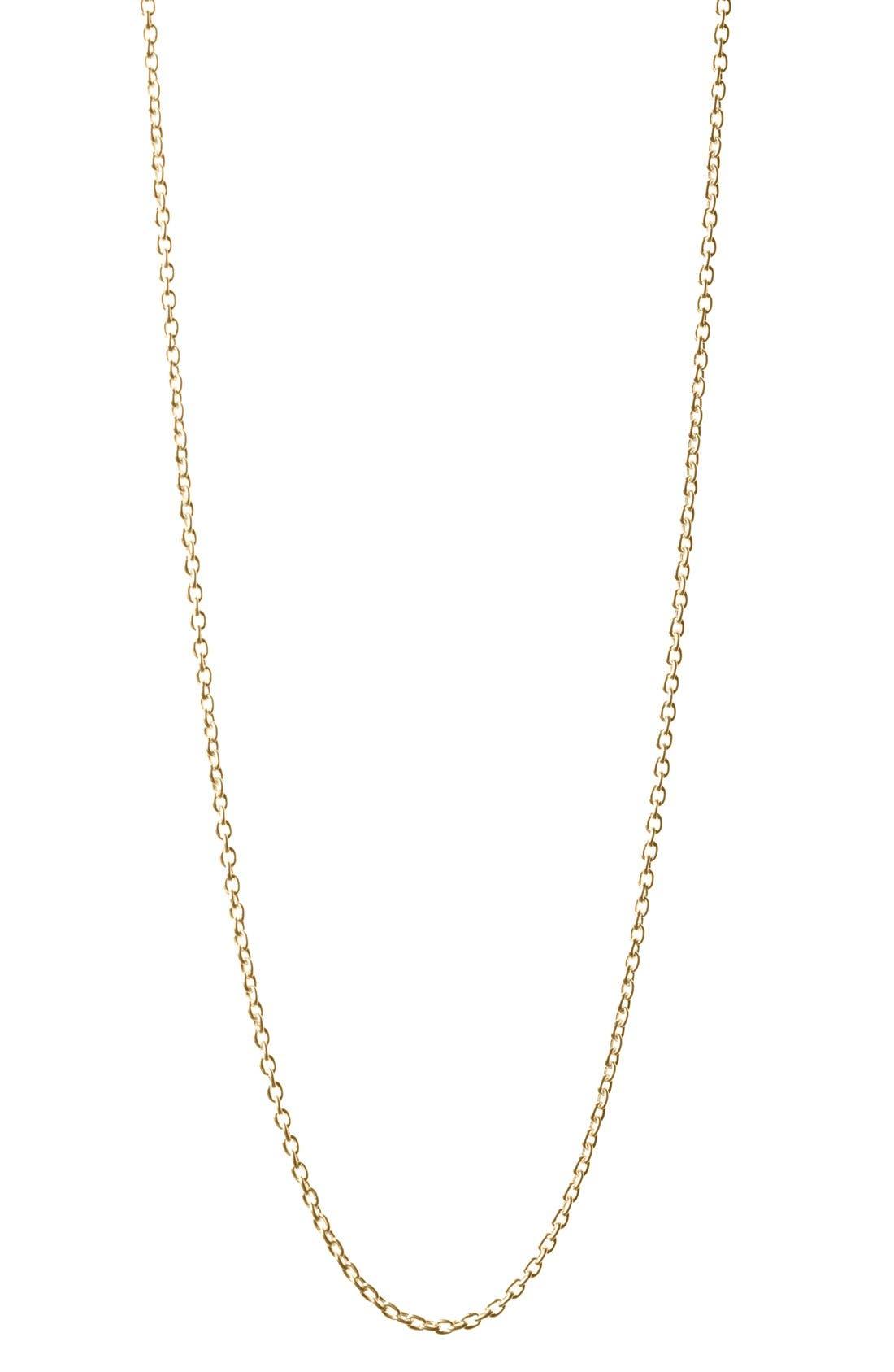 Alternate Image 1 Selected - Baroni Long Link Necklace