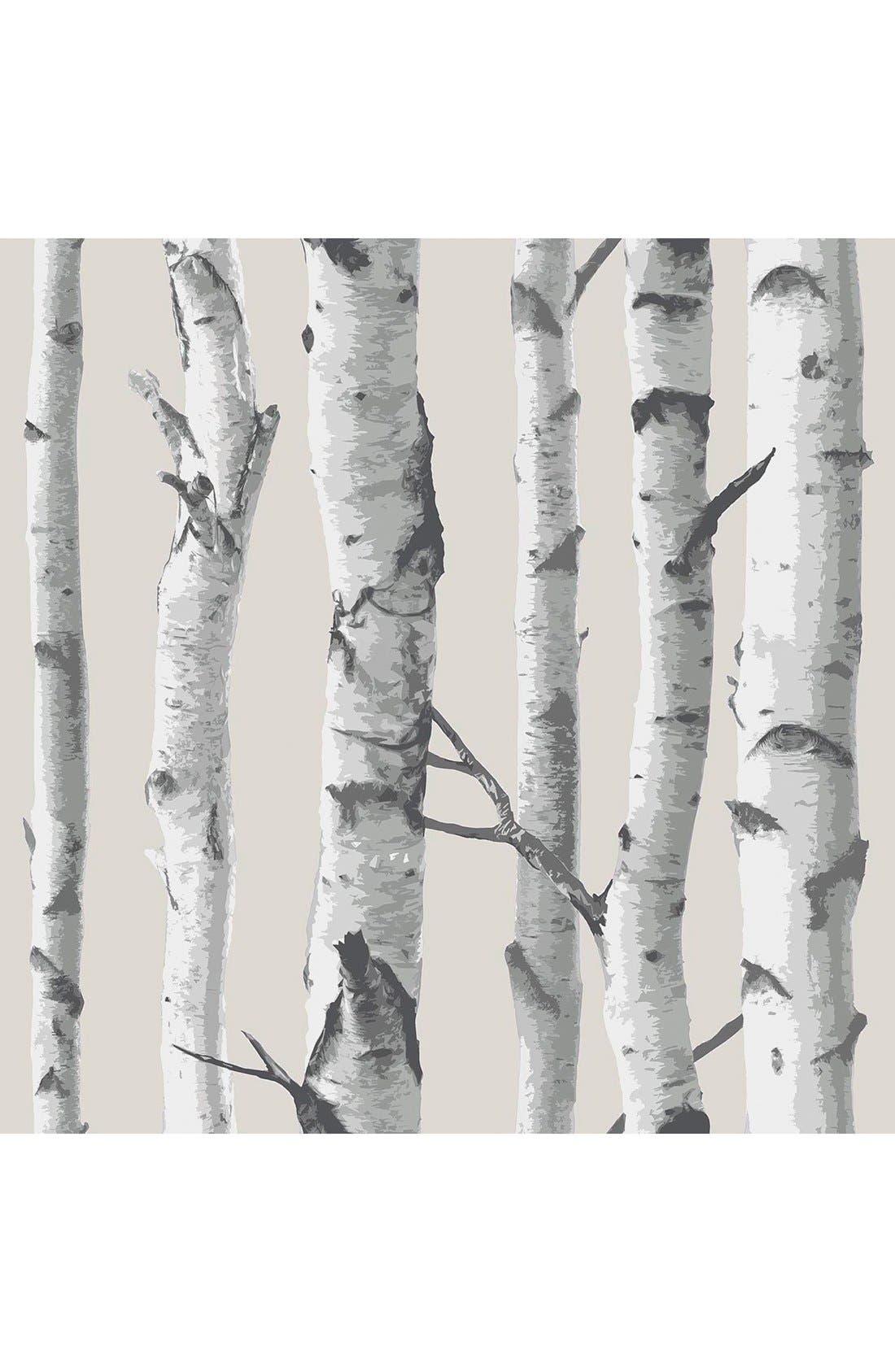 'Birch Tree'  Peel & Stick Vinyl Wallpaper,                         Main,                         color, White