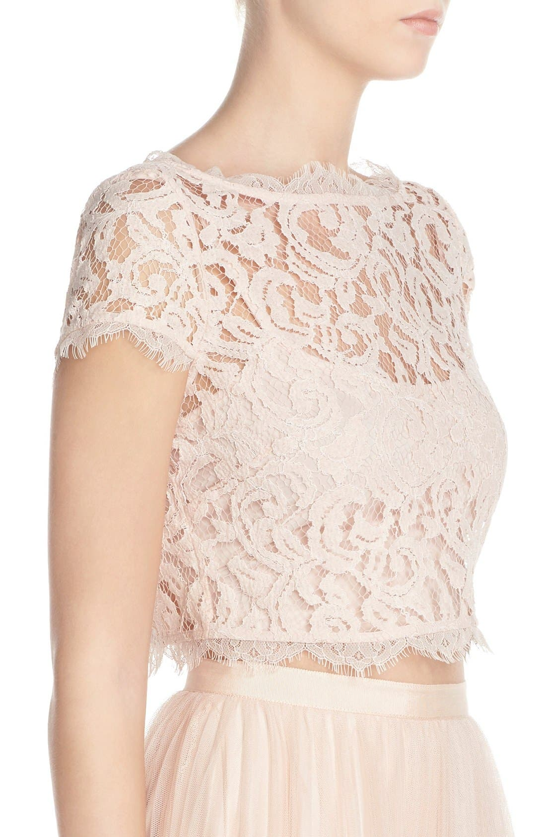 Alternate Image 3  - Adrianna Papell Lace Crop Top