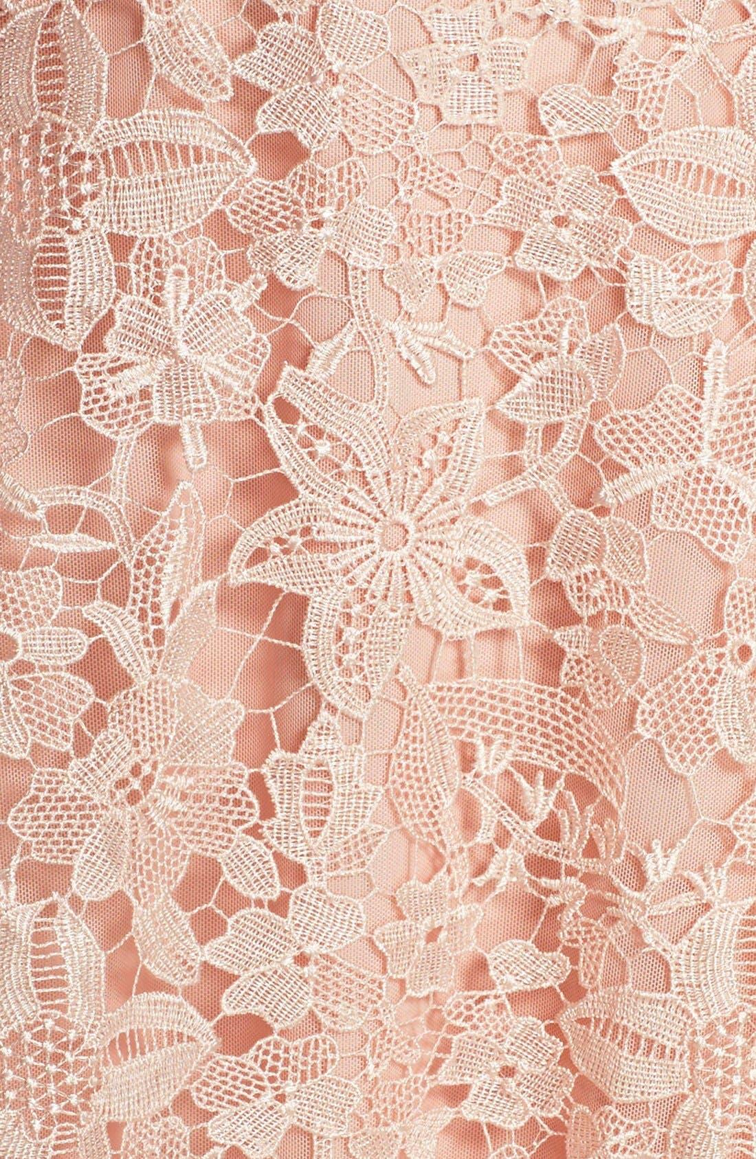 Alternate Image 5  - Julia Jordan Floral Lace A-Line Dress