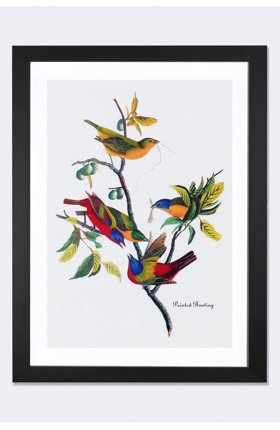 'Painted Bunting' Framed Fine Art Print,                             Main thumbnail 1, color,                             Black
