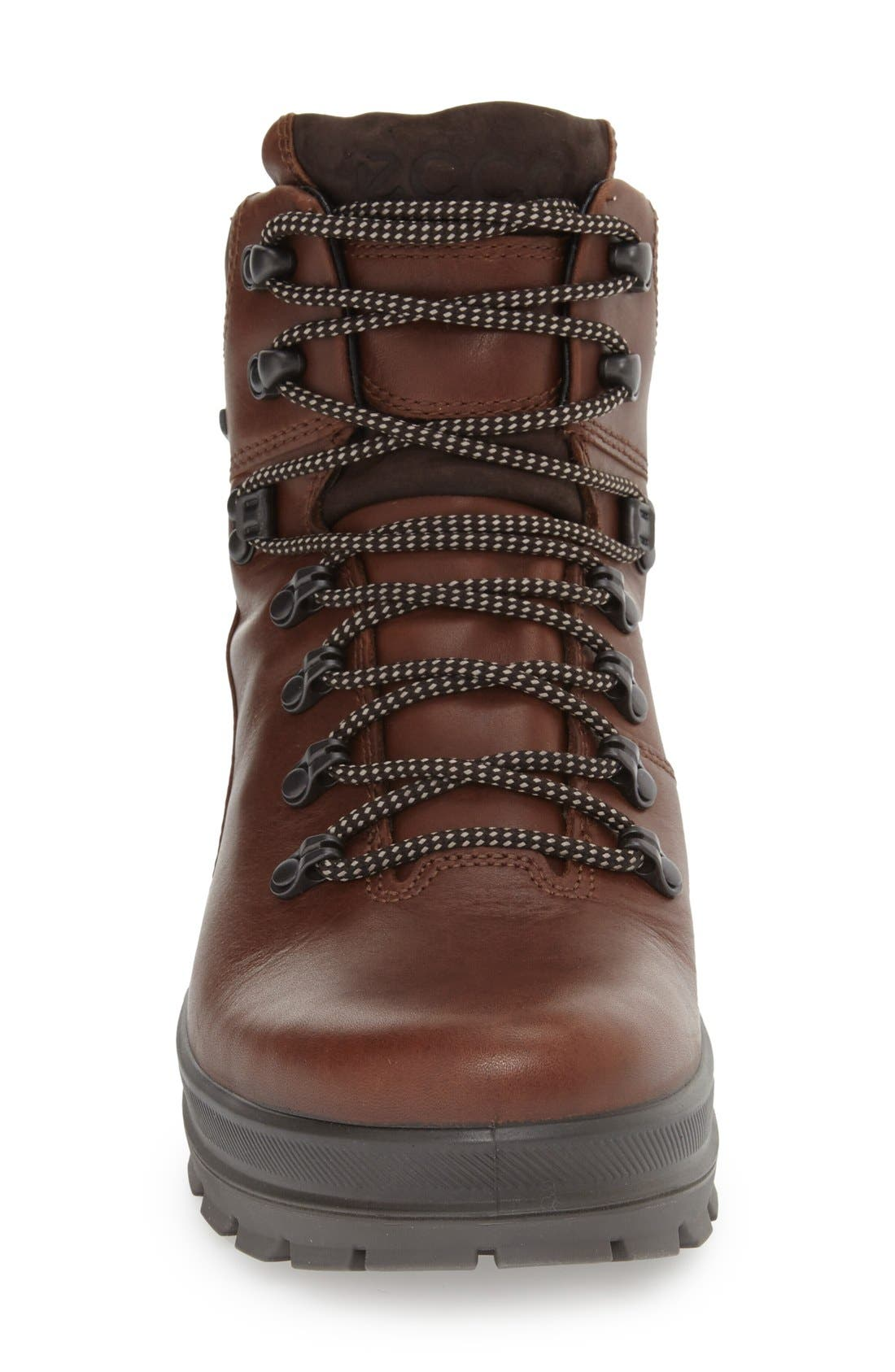 'Rugged Track GTX' Hiking Boot,                             Alternate thumbnail 3, color,                             Bison/ Mocha Leather
