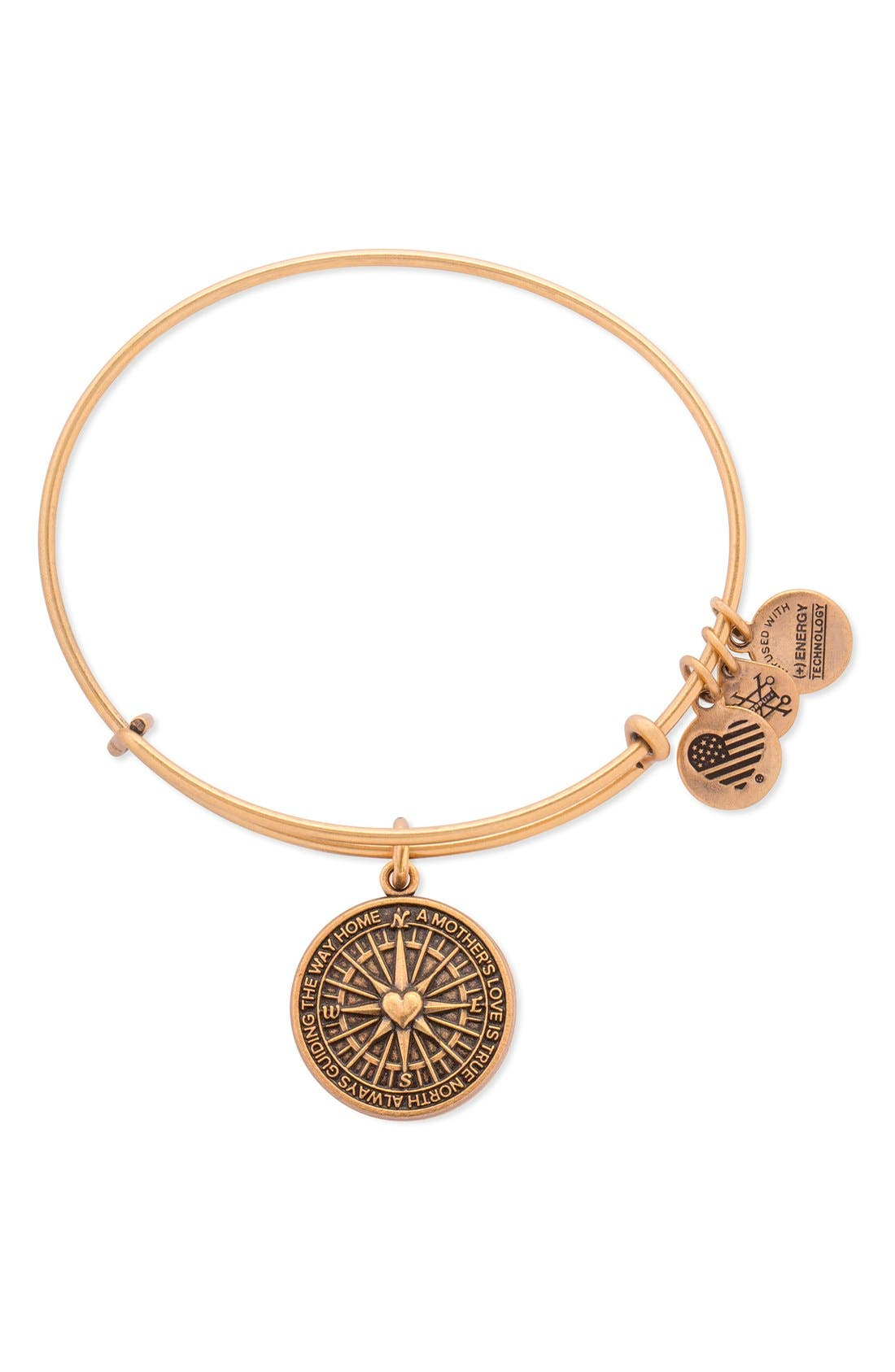 Alternate Image 1 Selected - Alex and Ani 'True Direction' Adjustable Wire Bangle