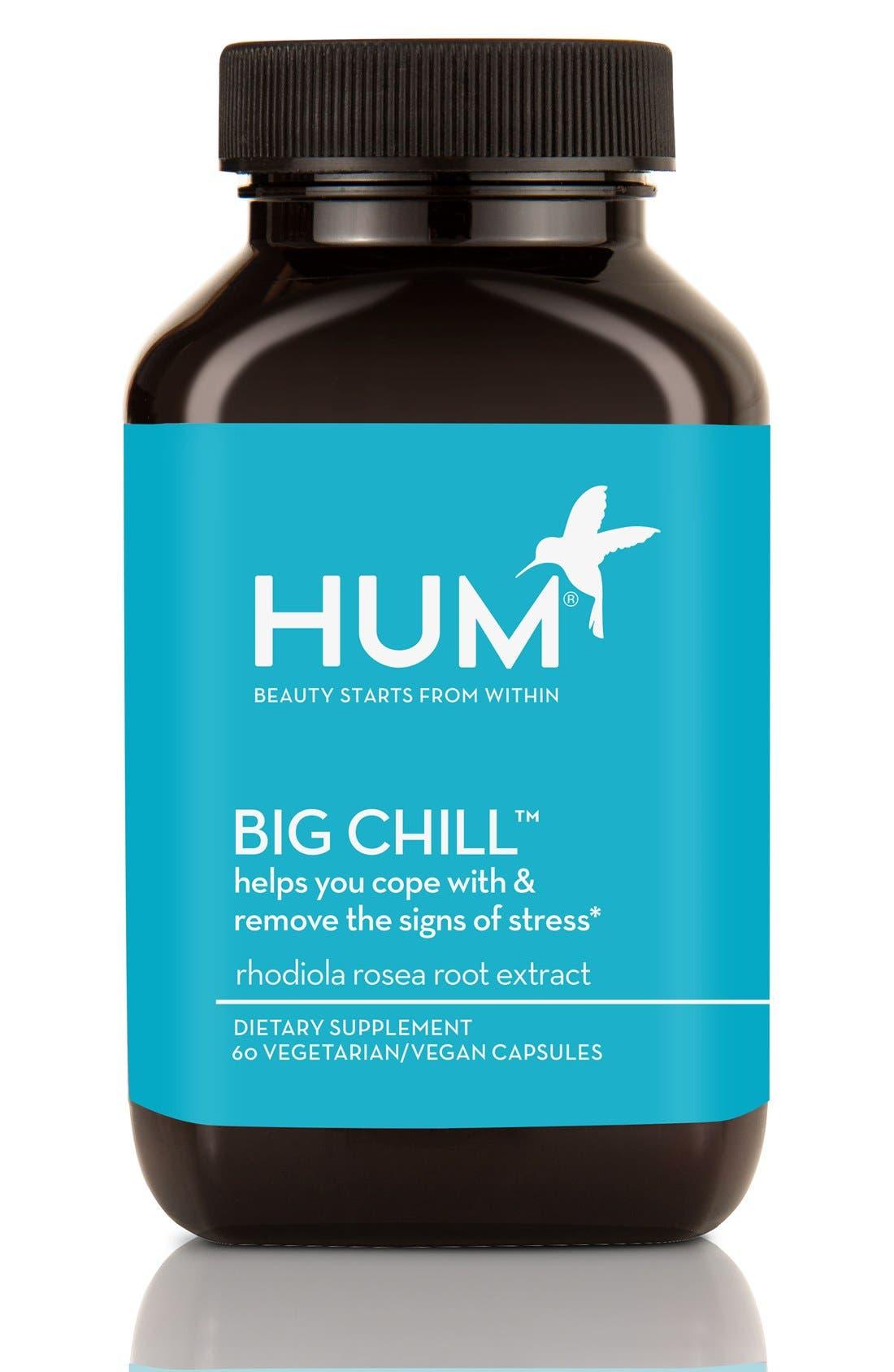Big Chill<sup>®</sup> Stress Management Supplement,                         Main,                         color, No Color