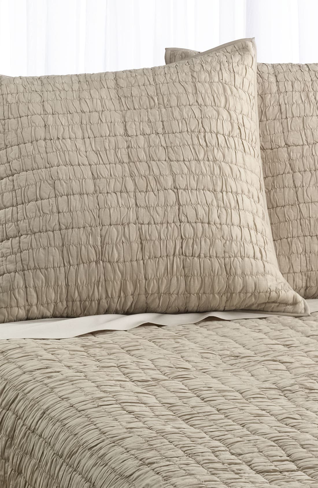 Alternate Image 1 Selected - Nordstrom at Home 'Alice' Euro Sham