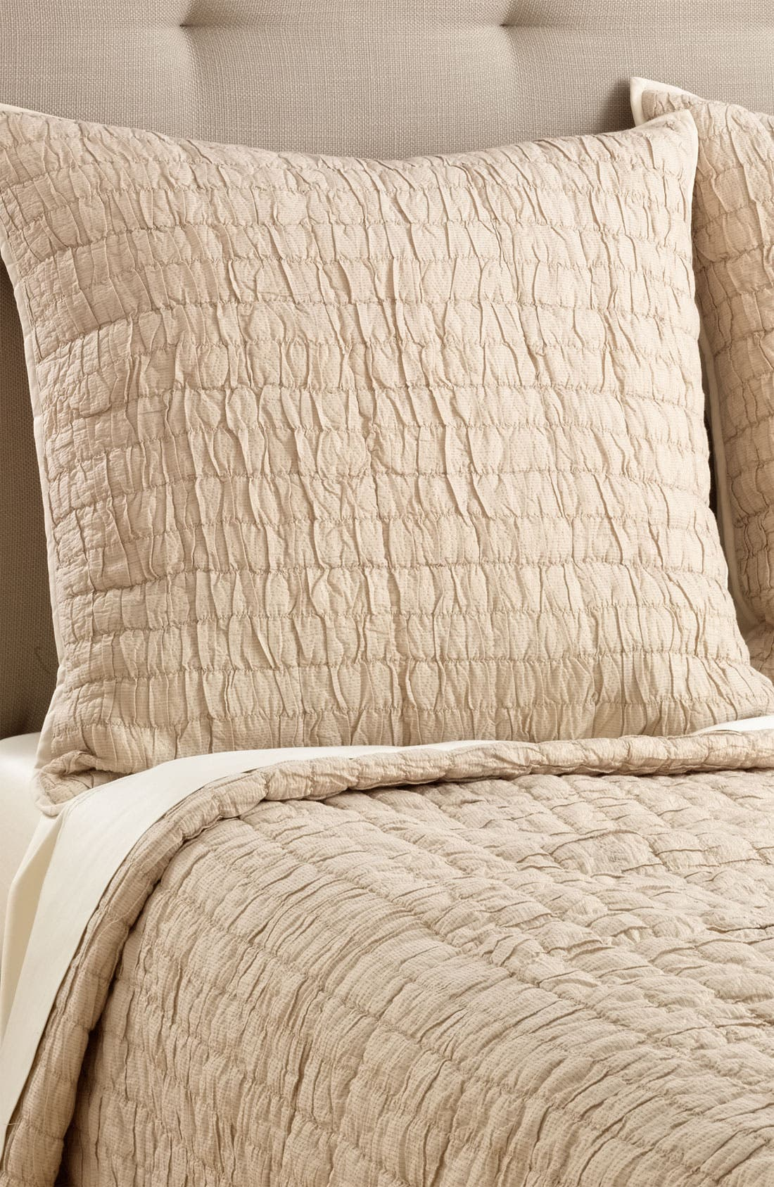 Main Image - Nordstrom at Home 'Alice' Metallic Euro Sham