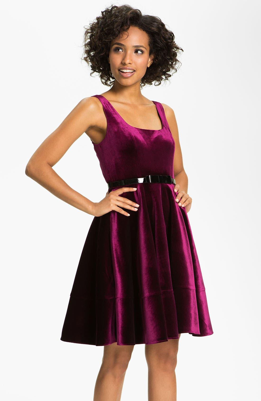 Alternate Image 1 Selected - Adrianna Papell Scoop Neck Velvet Dress (Petite)