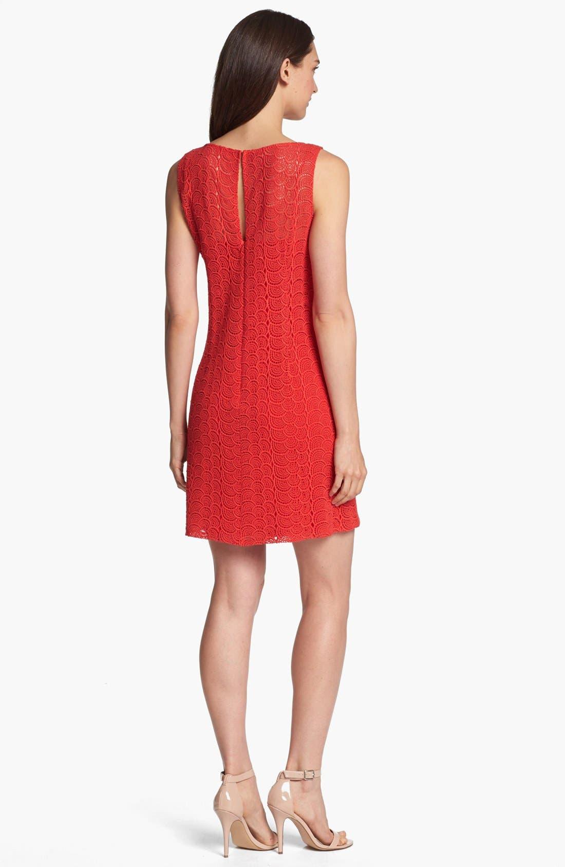 Alternate Image 2  - Ivy & Blu Sleeveless Lace Shift Dress