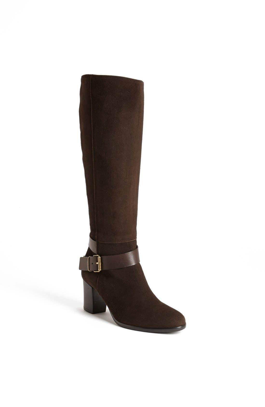 Alternate Image 1 Selected - Cordani 'Vasquez' Tall Italian Suede Boot
