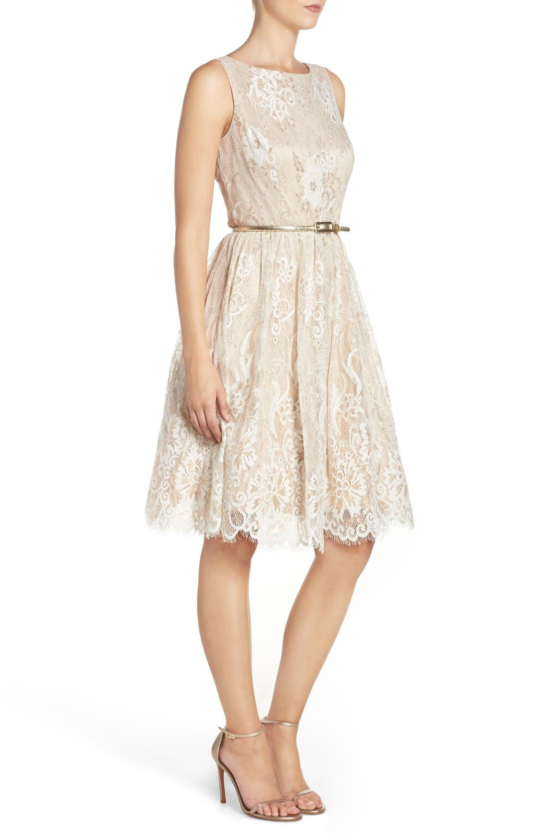 Alternate Image 3  - Eliza J Belted Lace Fit & Flare Dress