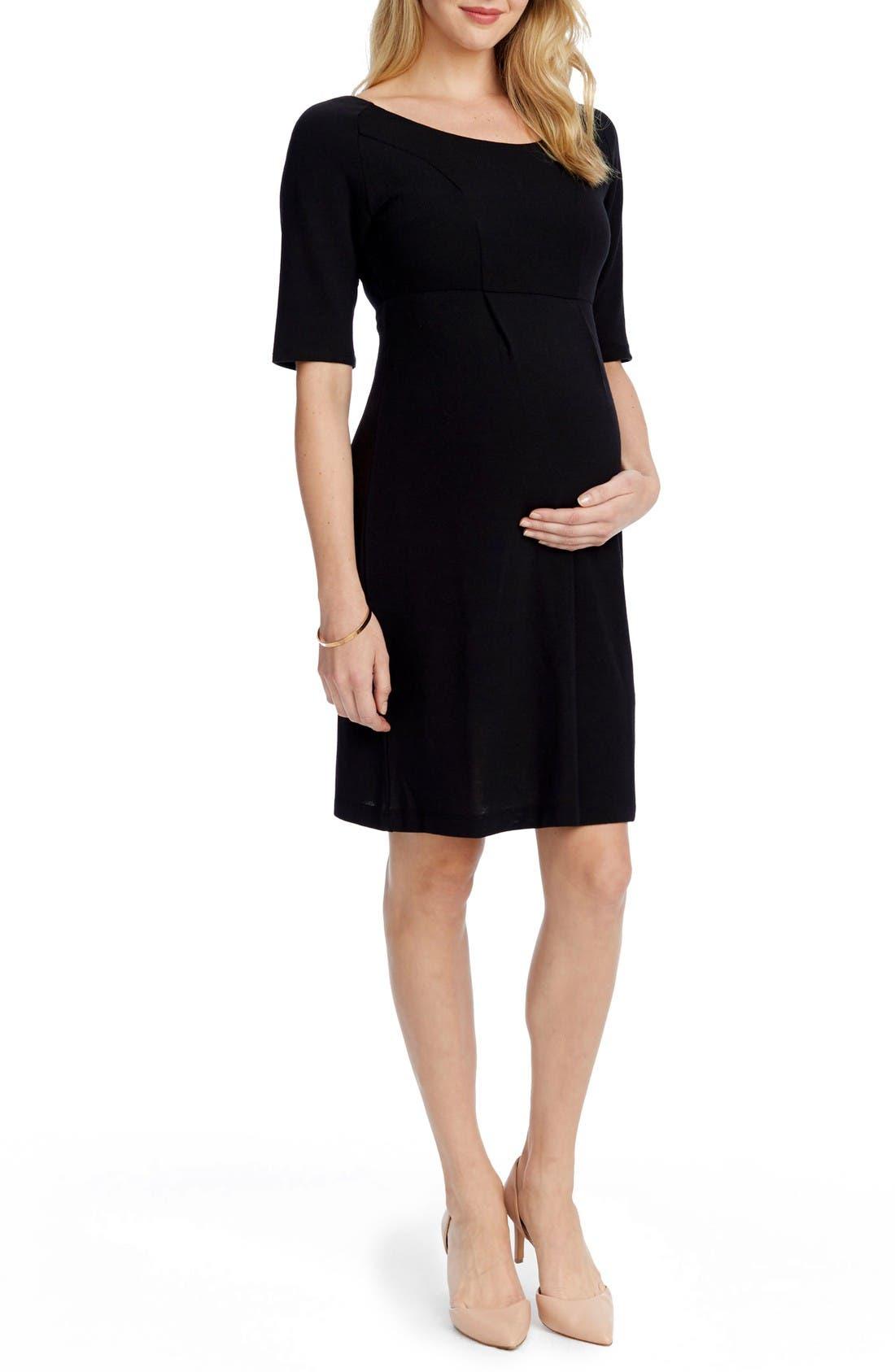 Alternate Image 3  - Rosie Pope Avery Maternity Sheath Dress