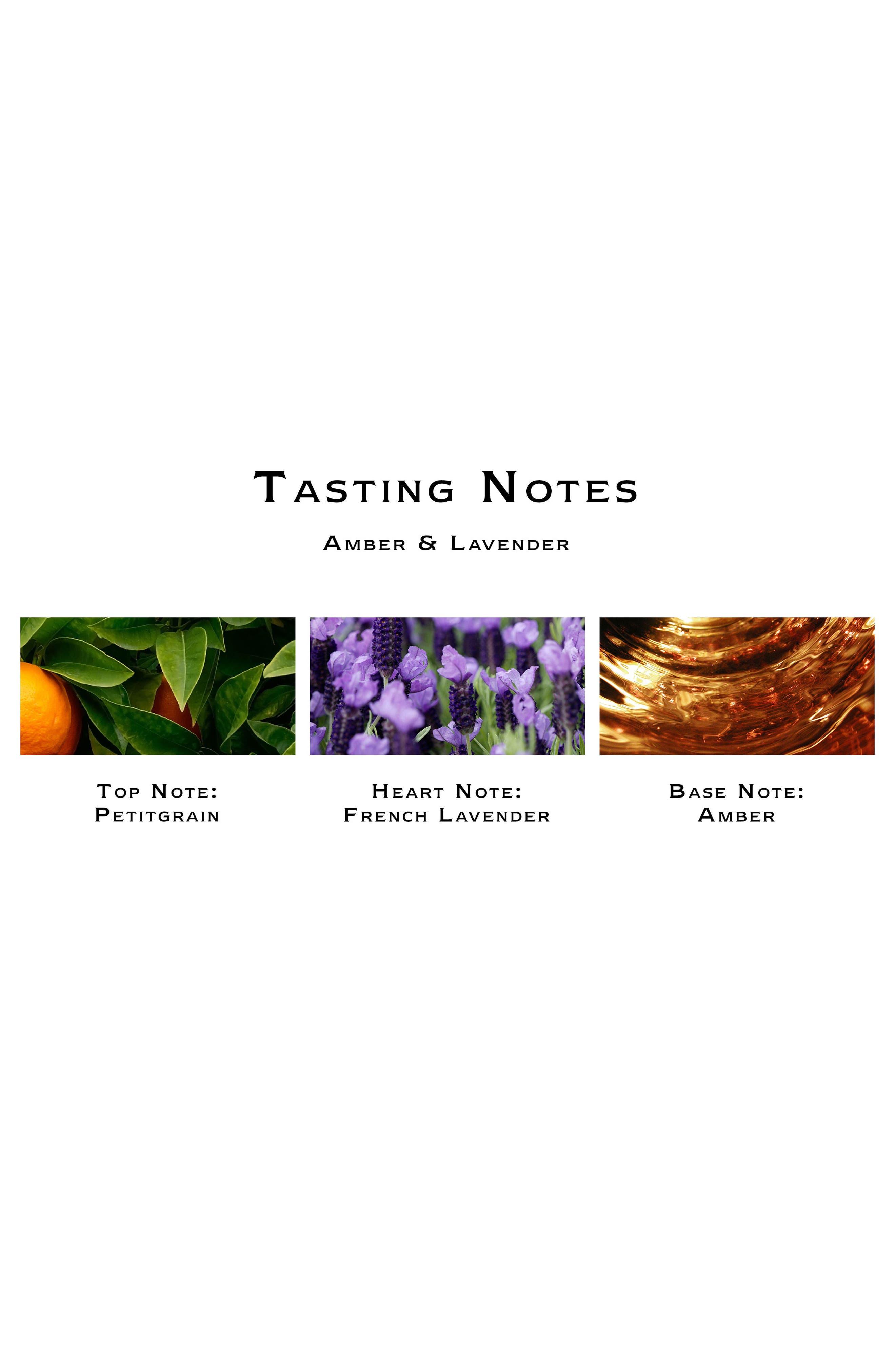 Amber & Lavender Body & Hand Wash,                             Alternate thumbnail 2, color,                             No Color