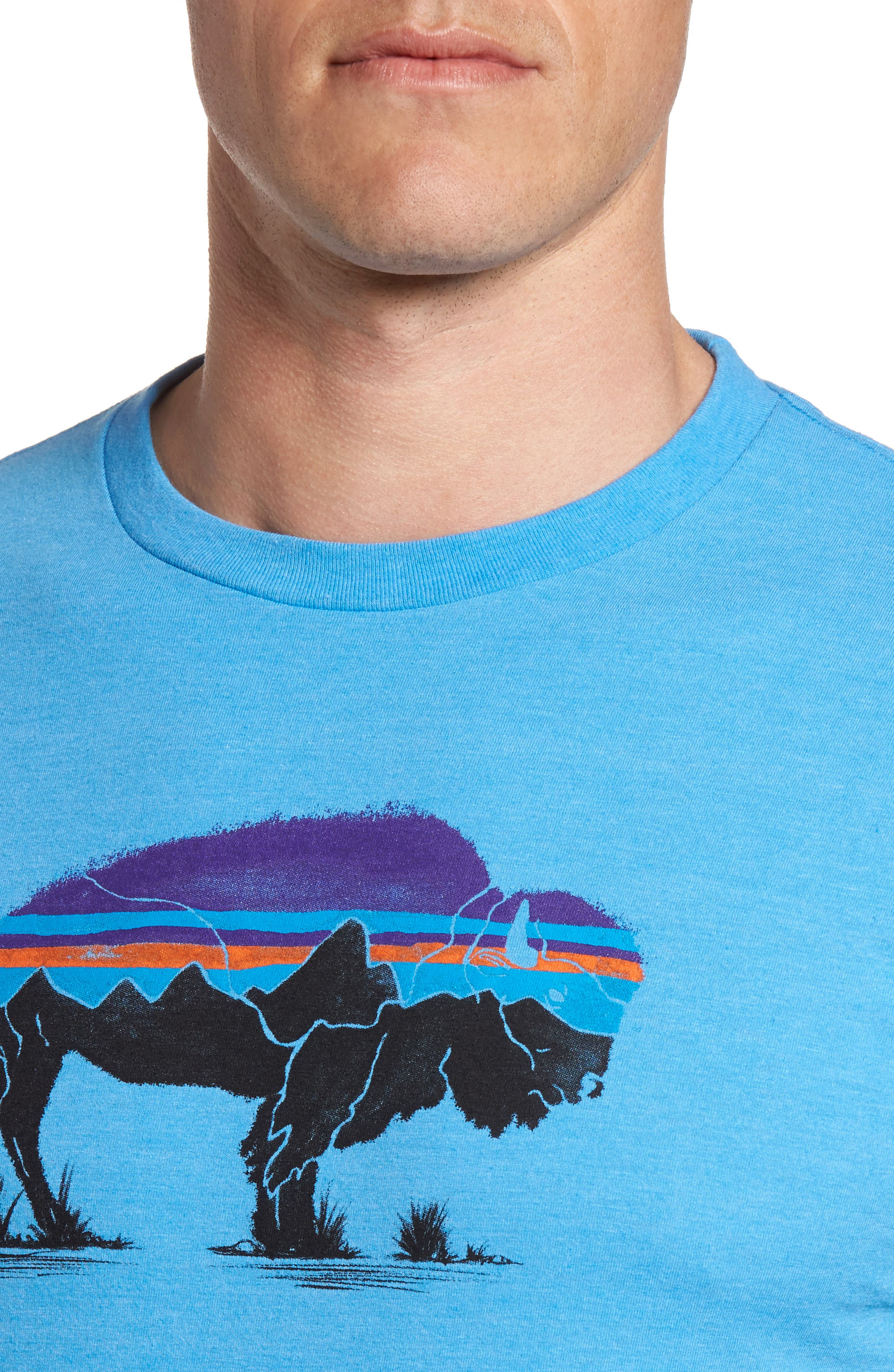 Fitz Roy Bison T-Shirt,                             Alternate thumbnail 4, color,                             Radar Blue