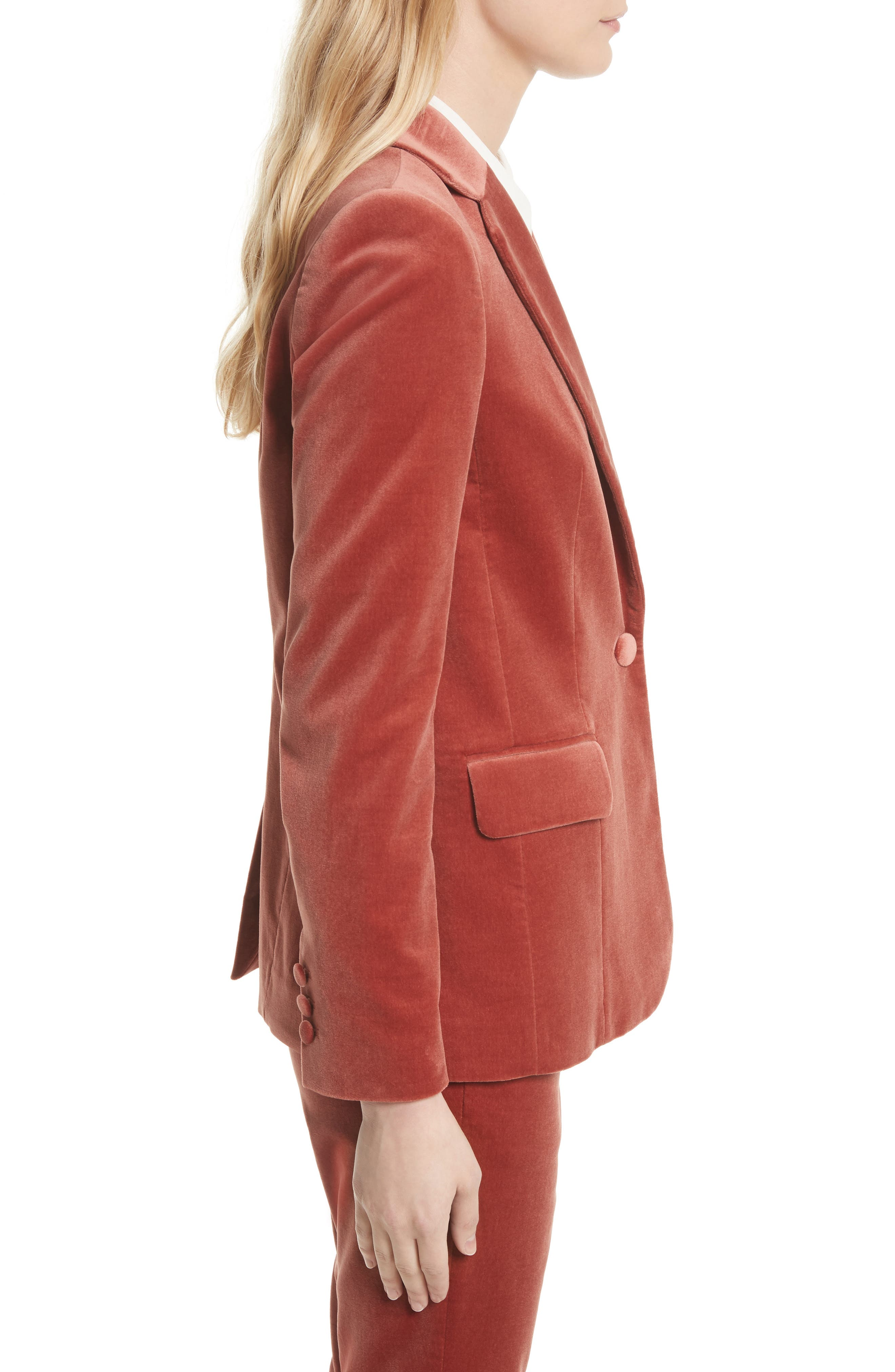 Stretch Velvet Blazer,                             Alternate thumbnail 3, color,                             Spice