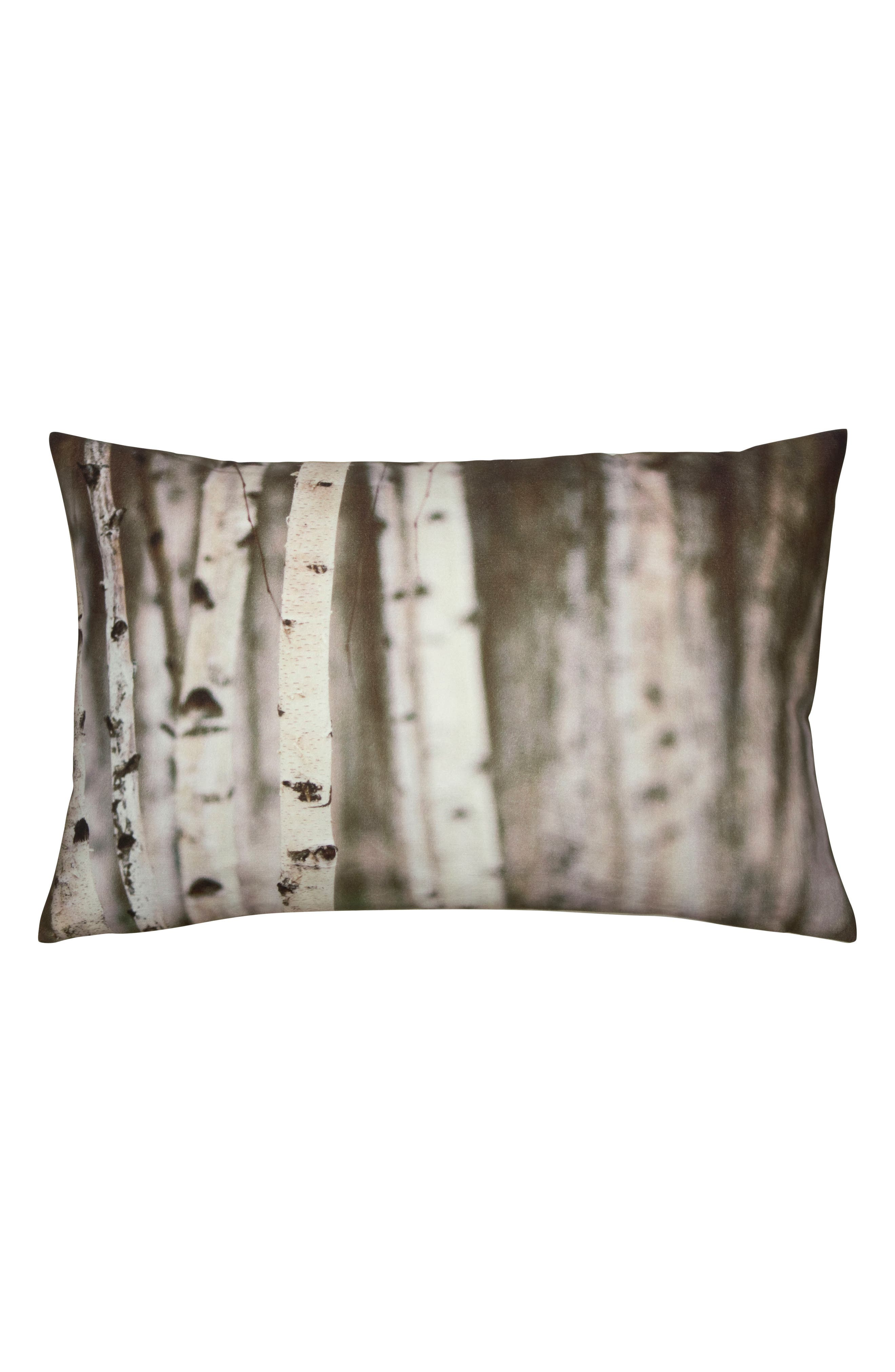 Birch Accent Pillow,                         Main,                         color, White/ Brown
