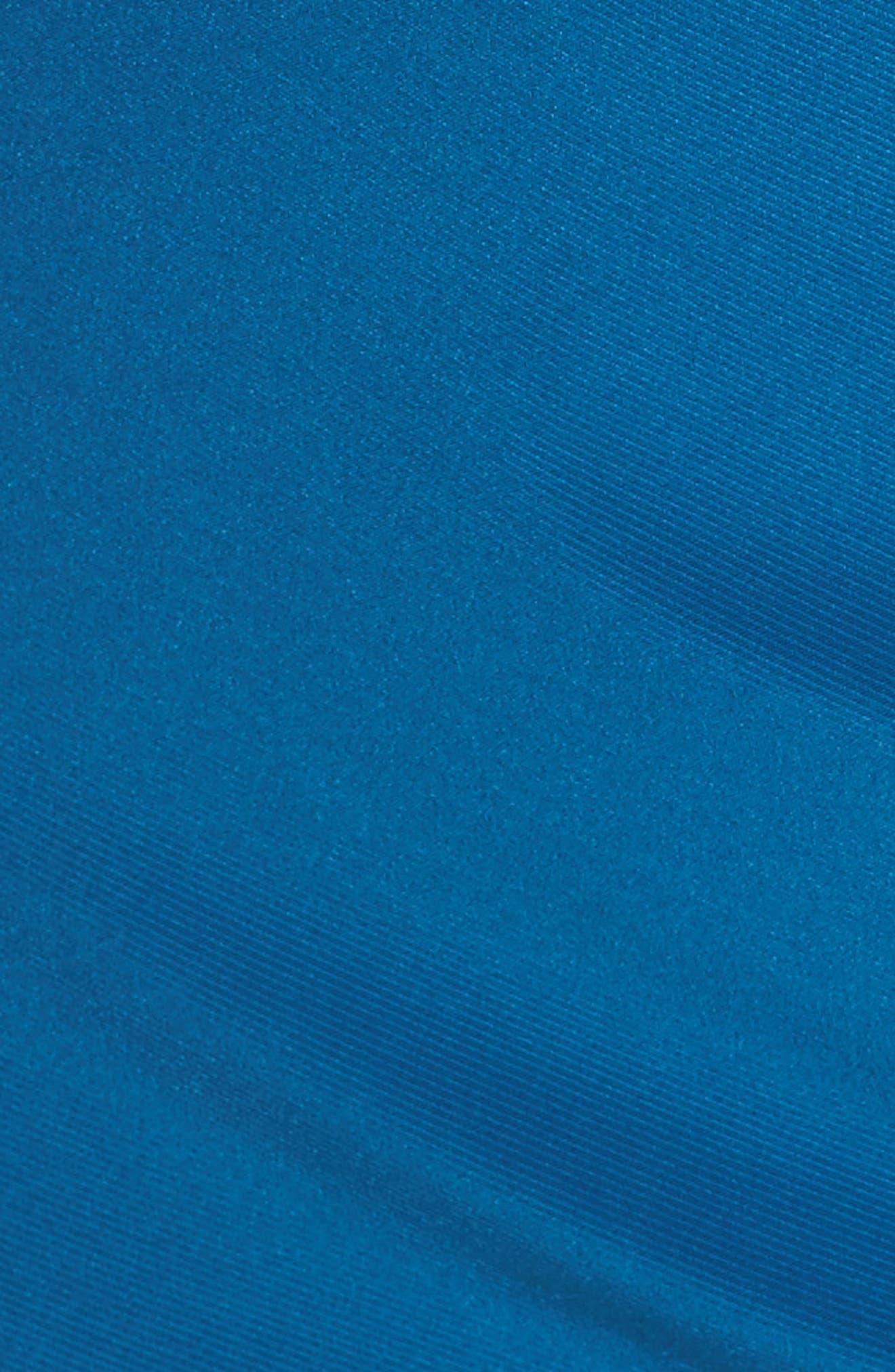 Alternate Image 4  - Adrianna Papell Embellished Sleeve Drape Gown