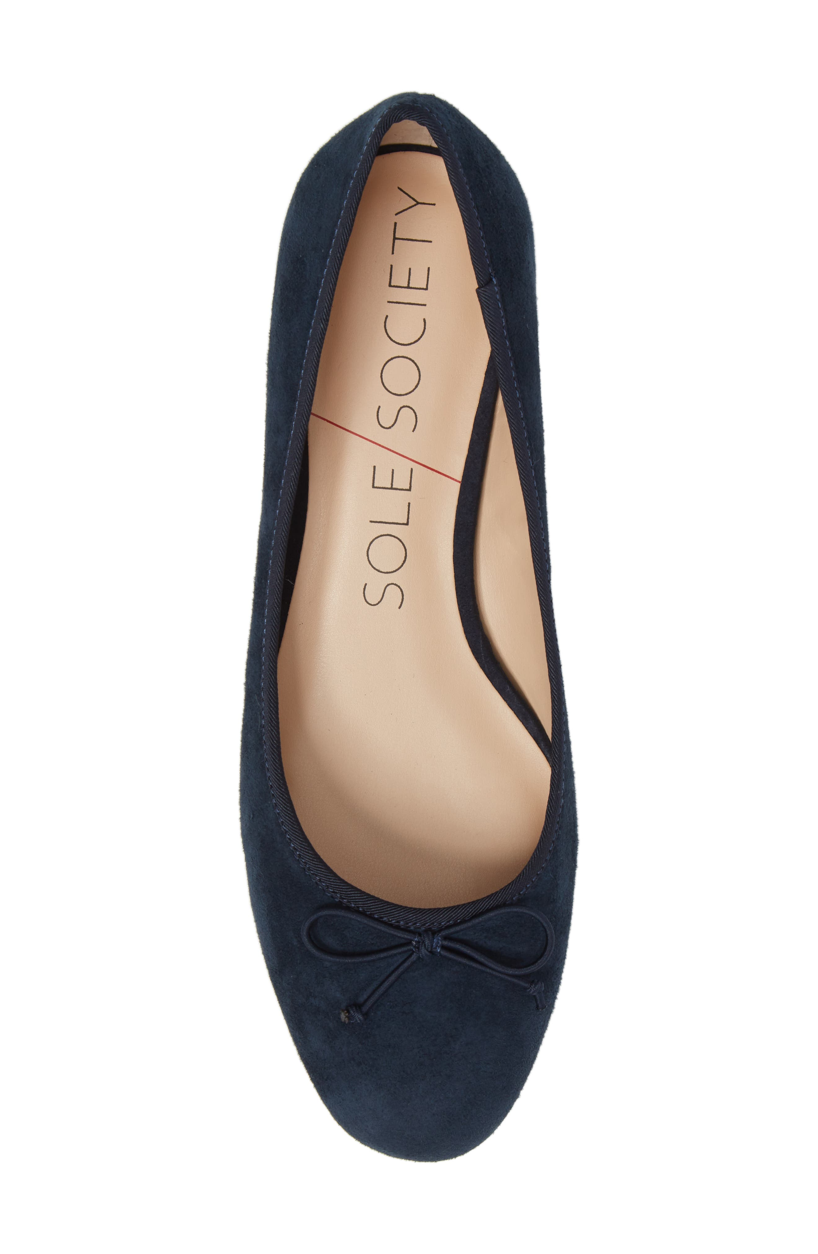 Anastasi Block Heel Flat,                             Alternate thumbnail 5, color,                             Ombre Blue Suede