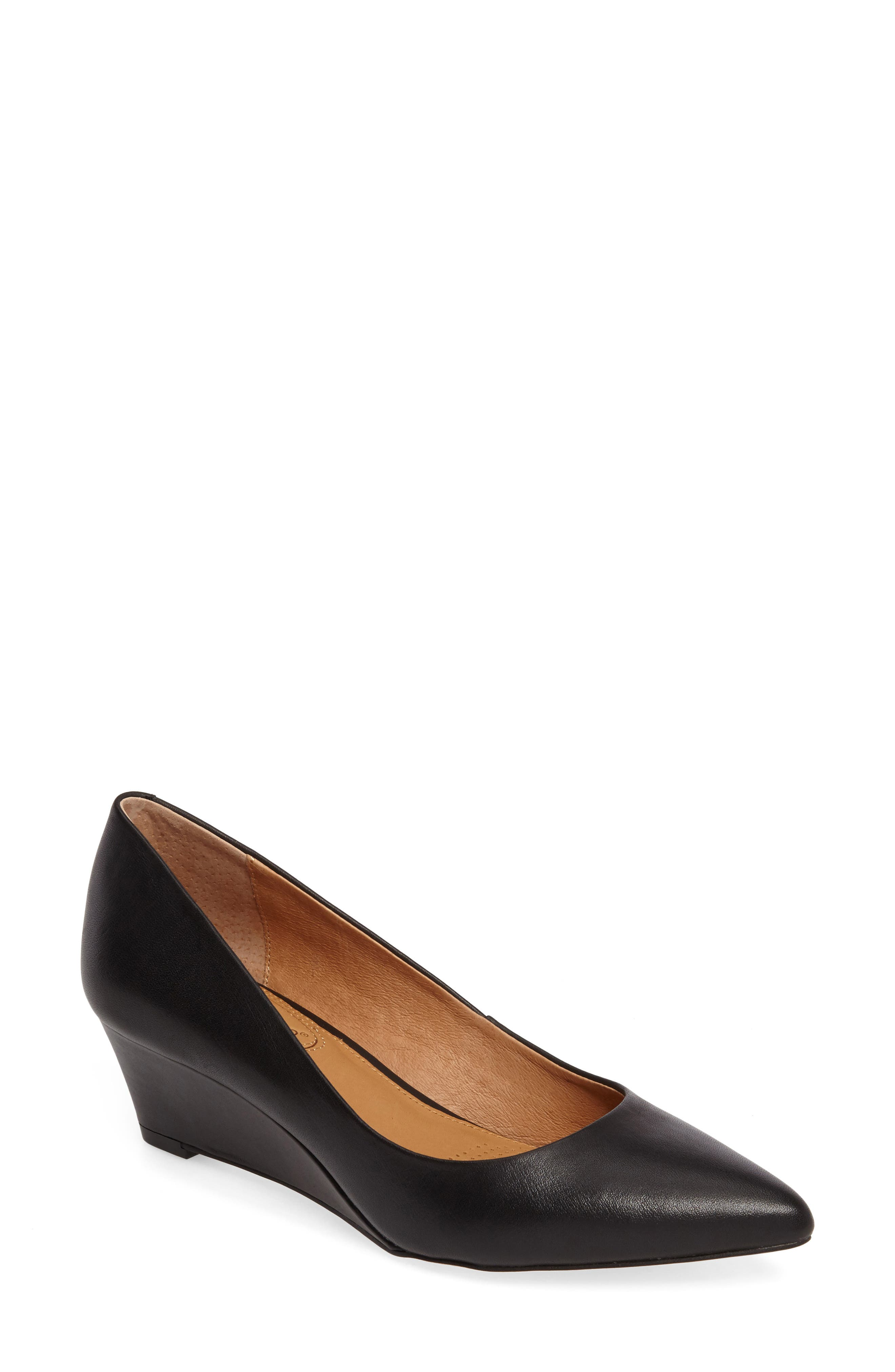 Nelly Pointy Toe Wedge Pump,                             Main thumbnail 1, color,                             Black Leather