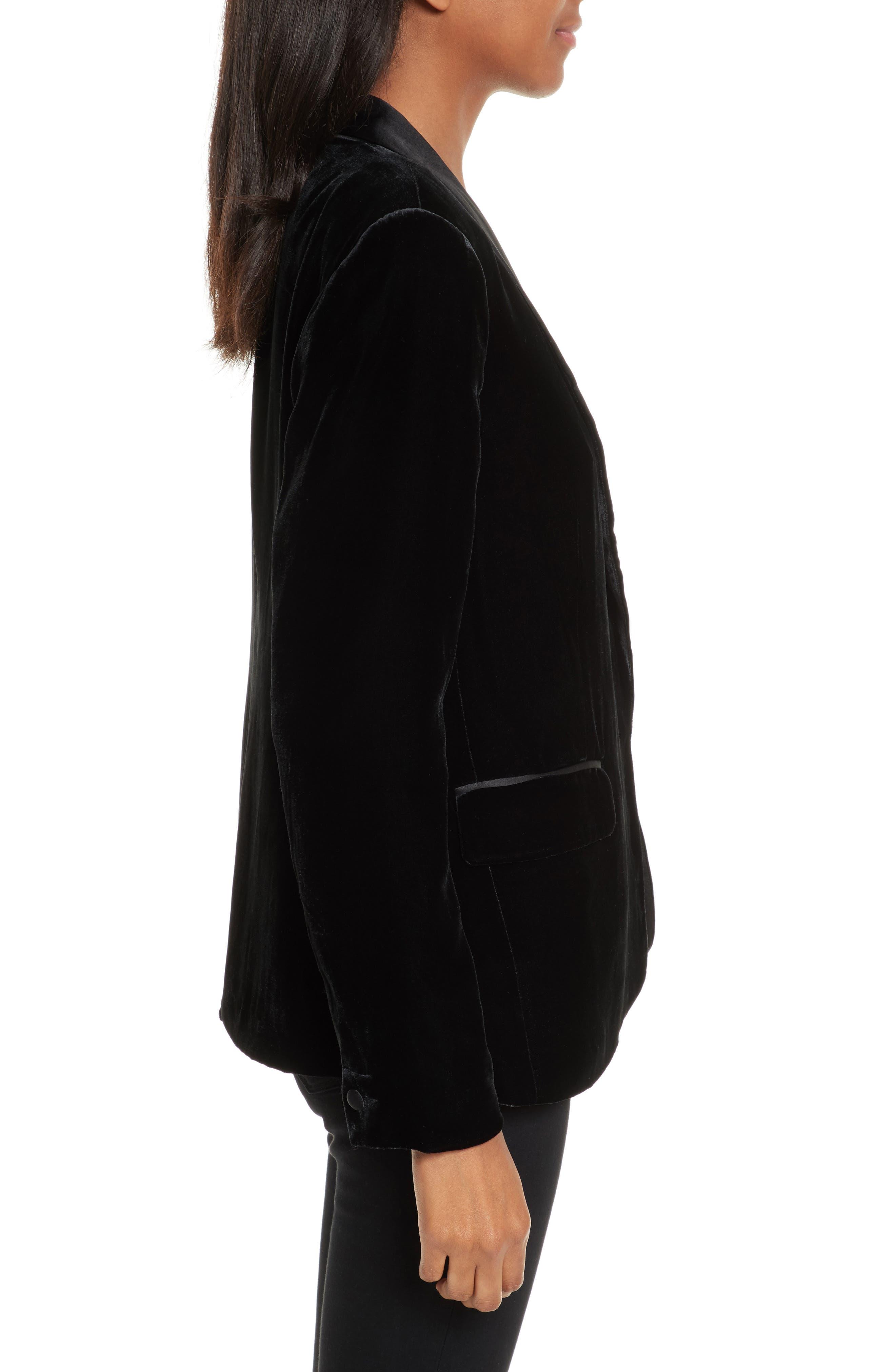 Alternate Image 3  - Joie Mehira H Velvet Blazer