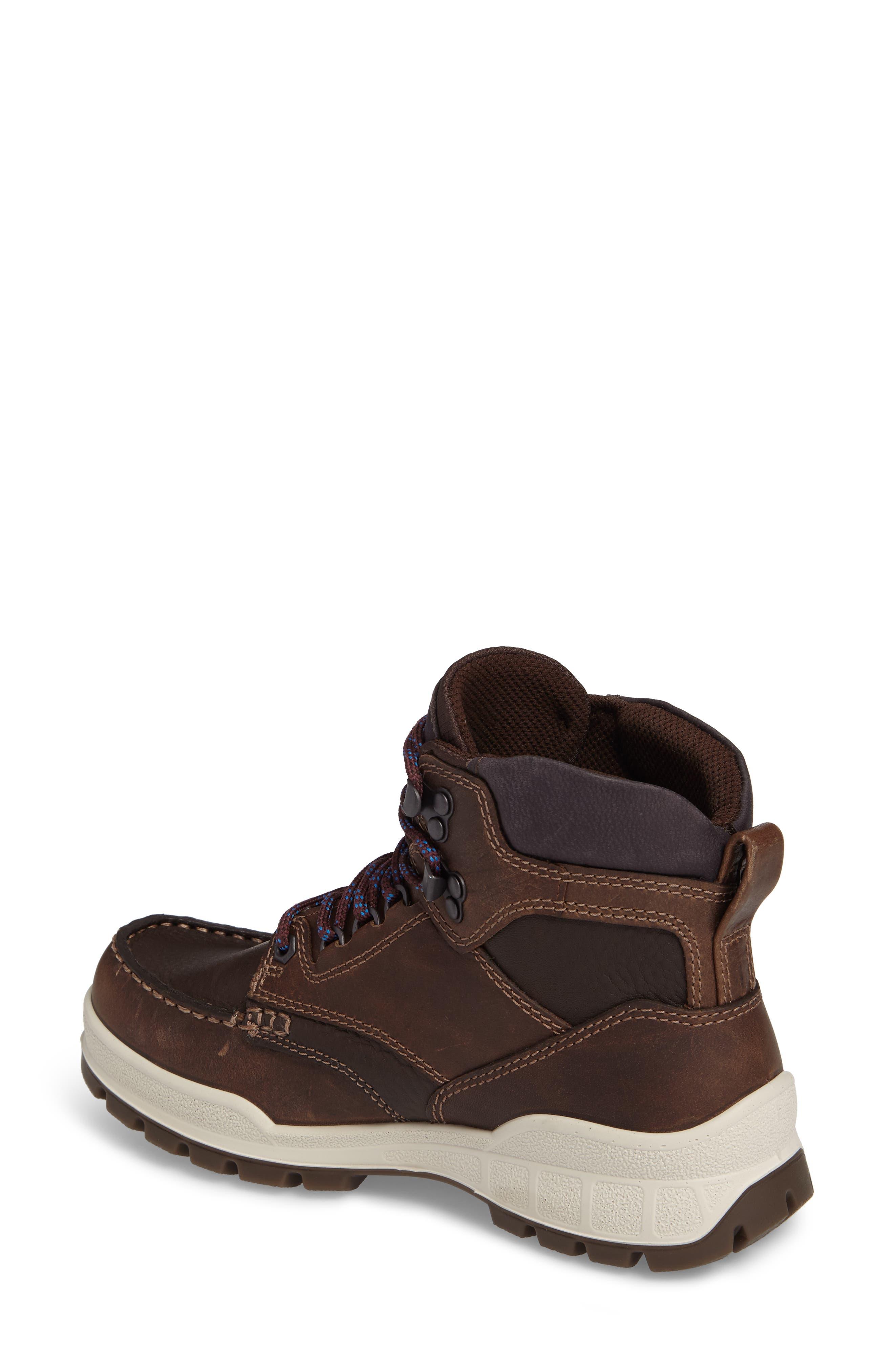 Track 25 Gore-Tex<sup>®</sup> Waterproof Hiking Boot,                             Alternate thumbnail 2, color,                             Cocoa Brown Leather