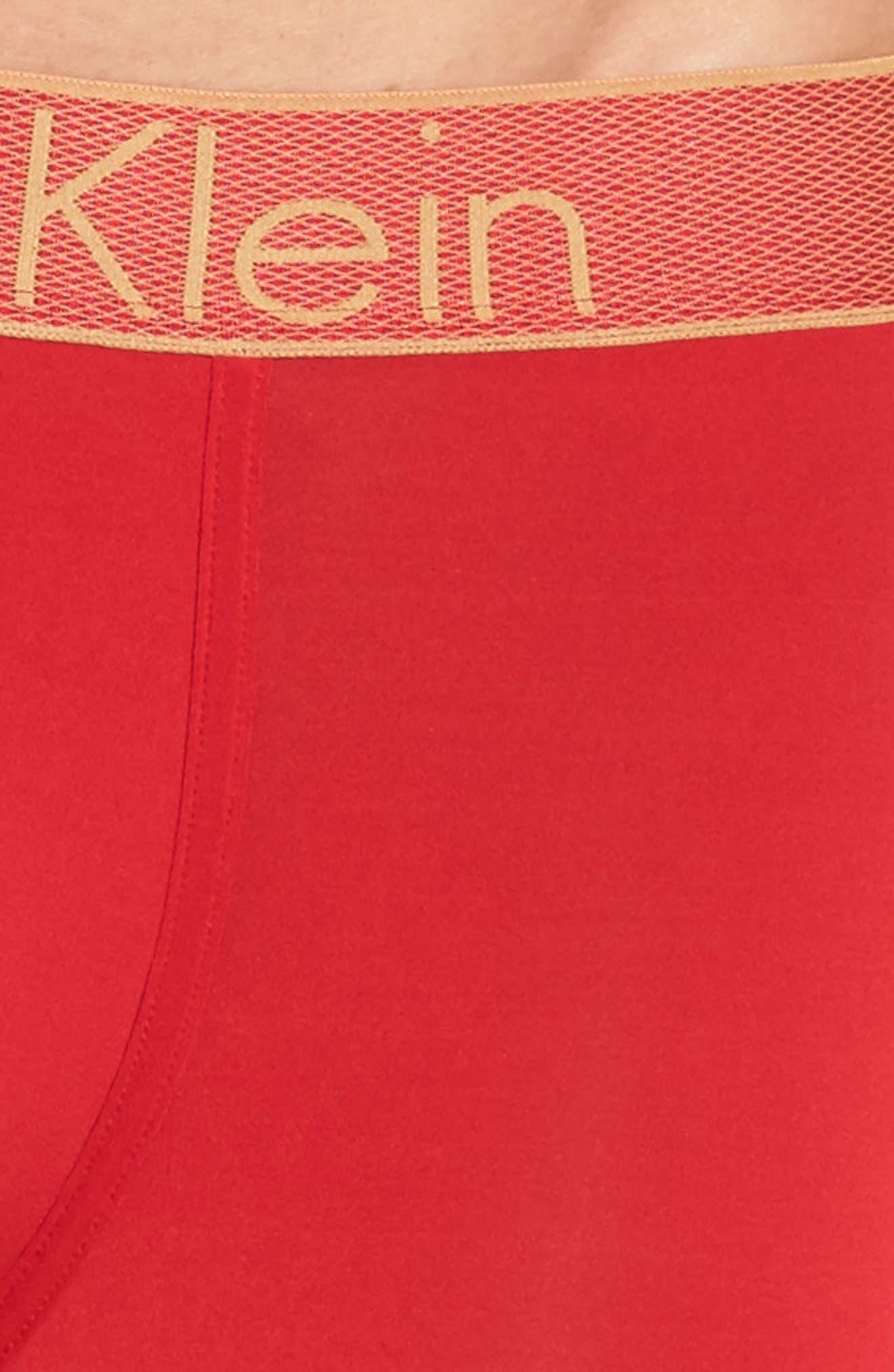 Alternate Image 4  - Calvin Klein Boxer Briefs
