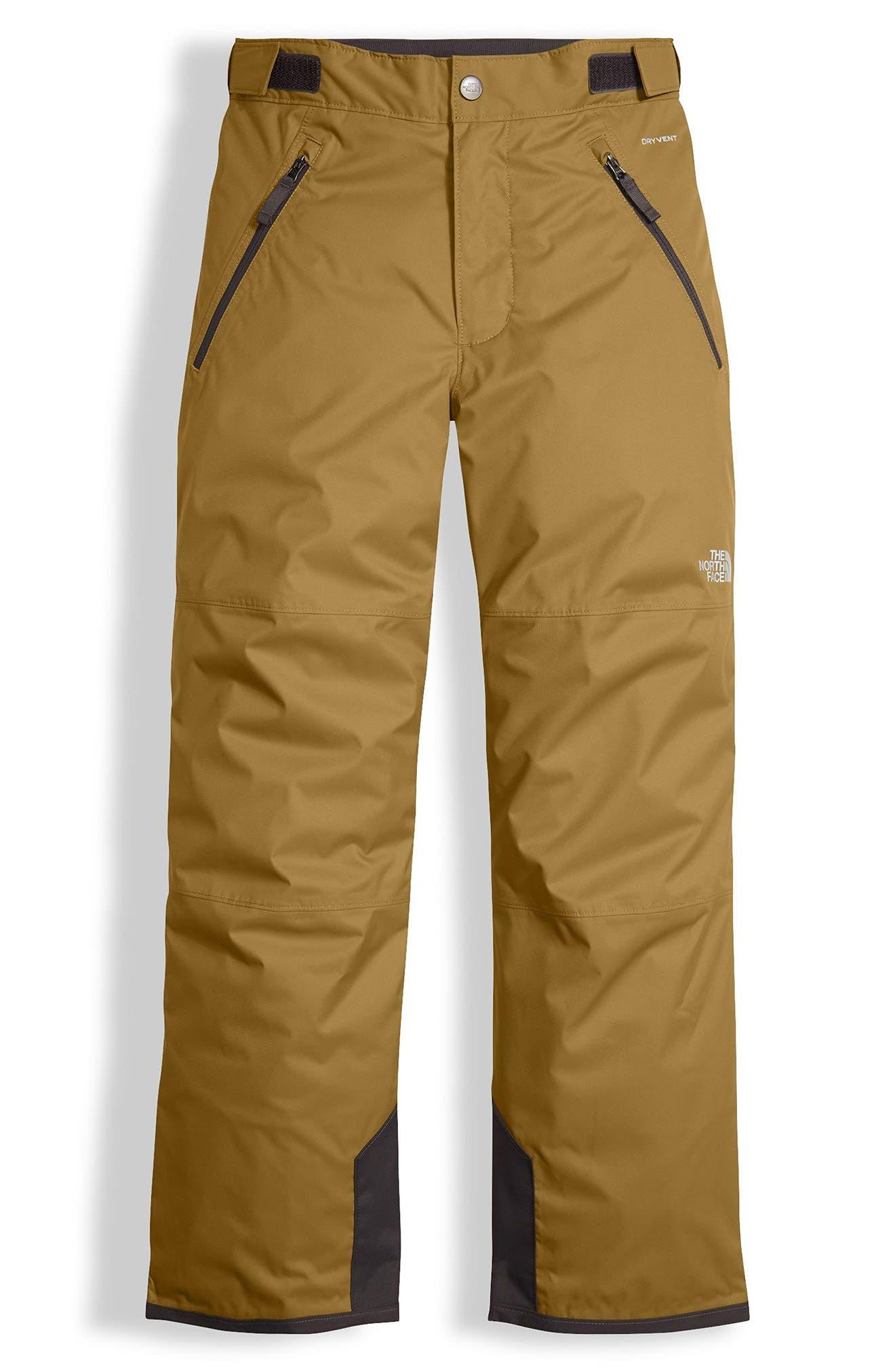 Freedom Waterproof Insulated Pants,                             Main thumbnail 1, color,                             British Khaki