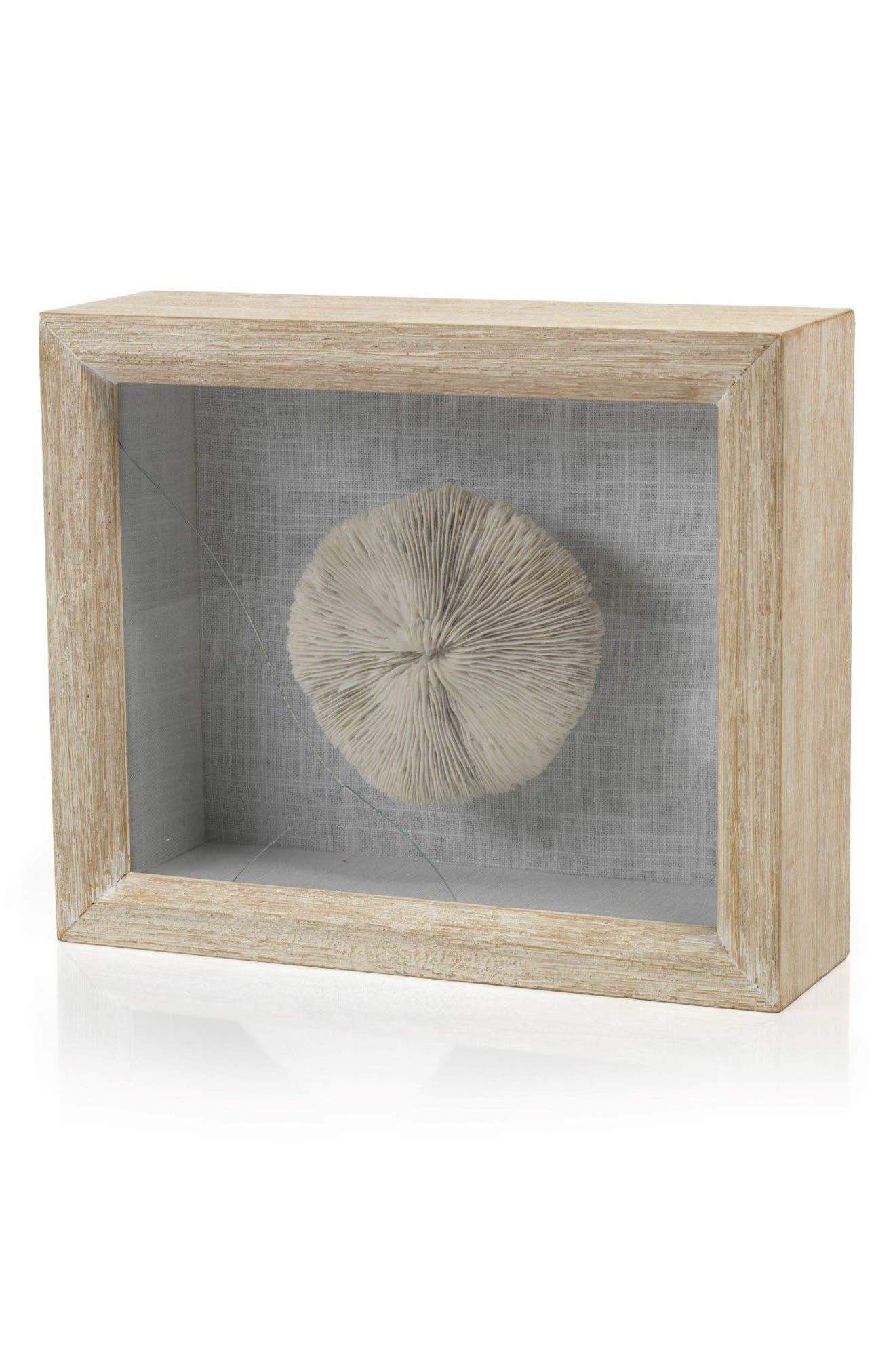 Mushroom Coral Shadow Box Art,                         Main,                         color, Off-White/ Blue/ Beige
