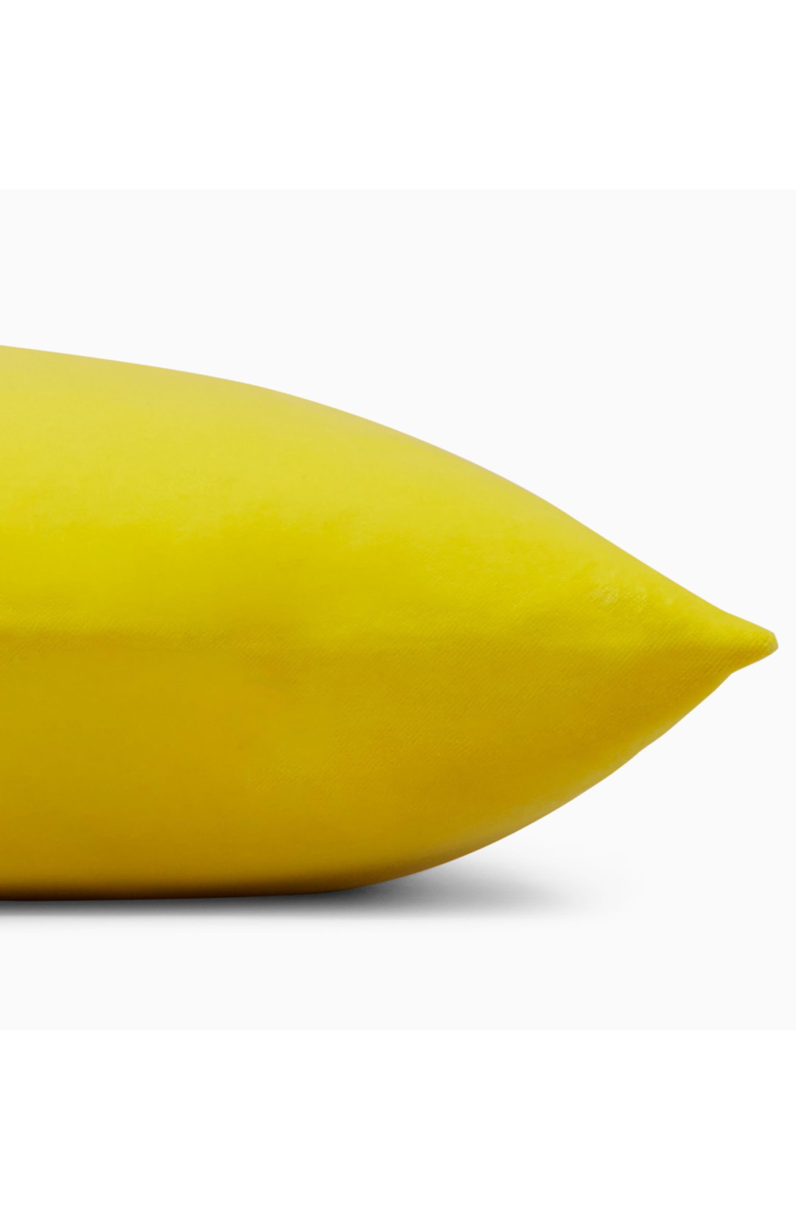 Alternate Image 3  - Calvin Klein Home Lucerne Velvet Accent Pillow