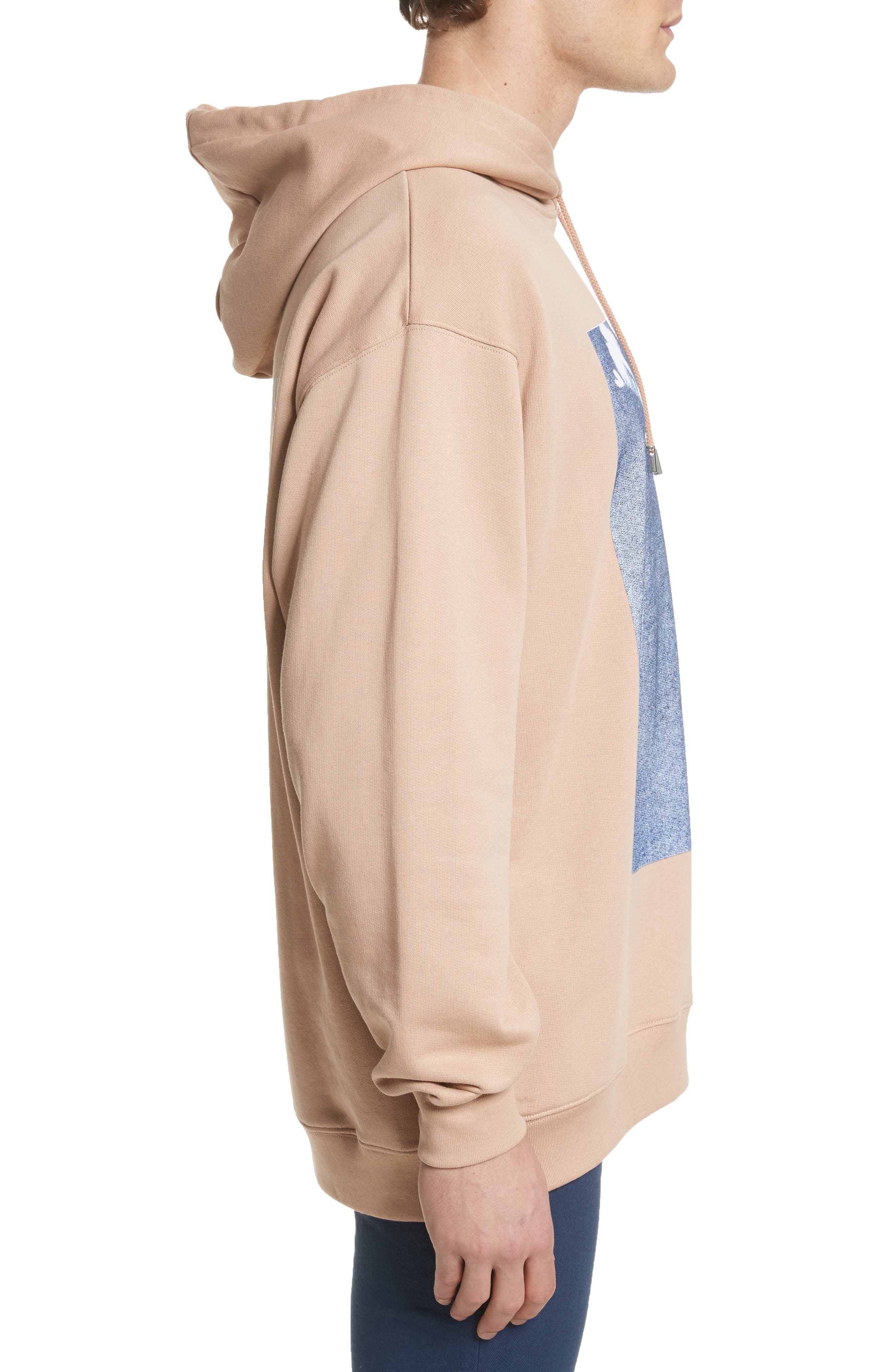 Fala Print Oversized Hoodie,                             Alternate thumbnail 3, color,                             Beige