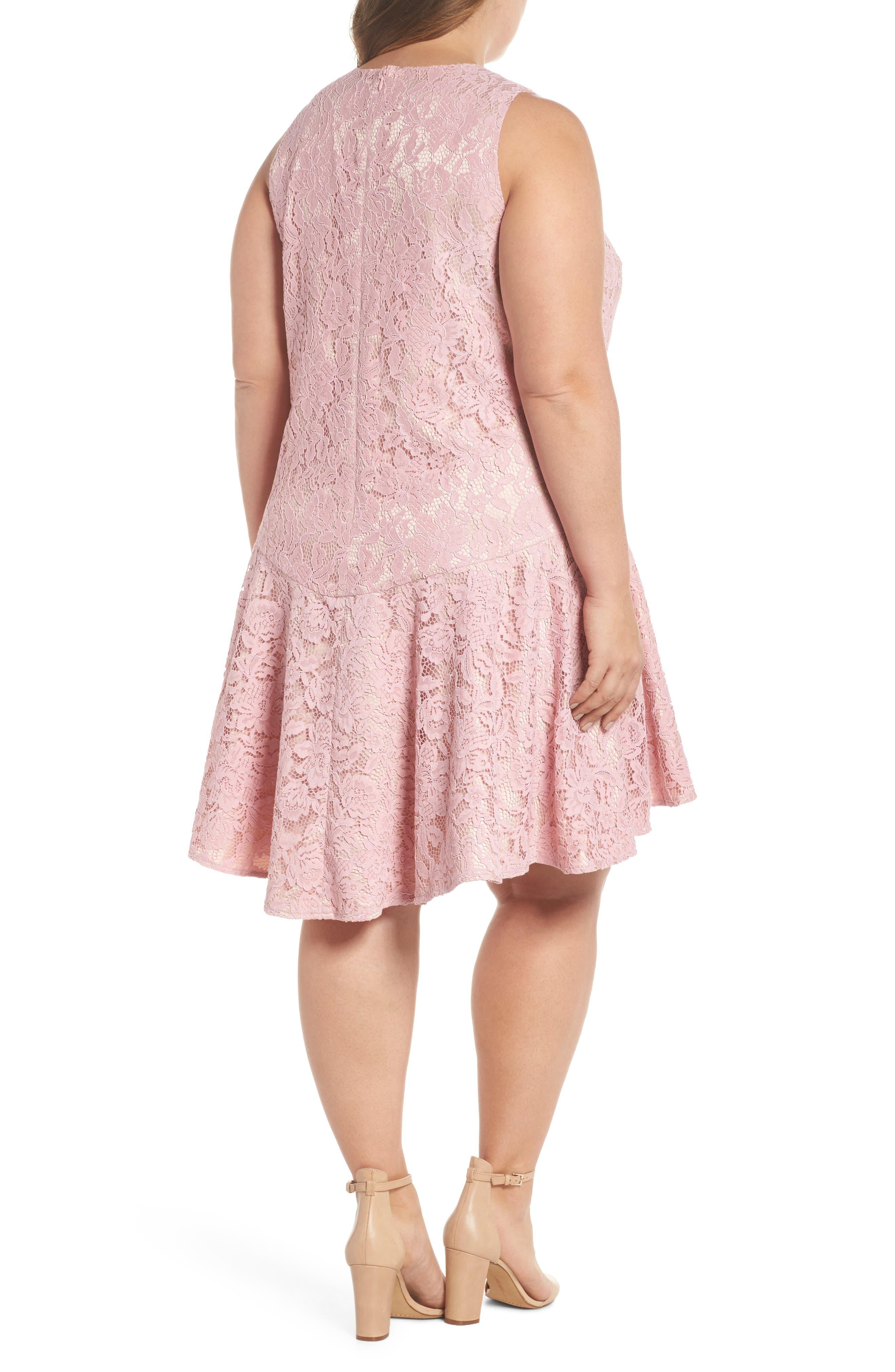 Lace Sleeveless Drop Waist Dress,                             Alternate thumbnail 2, color,                             Blush