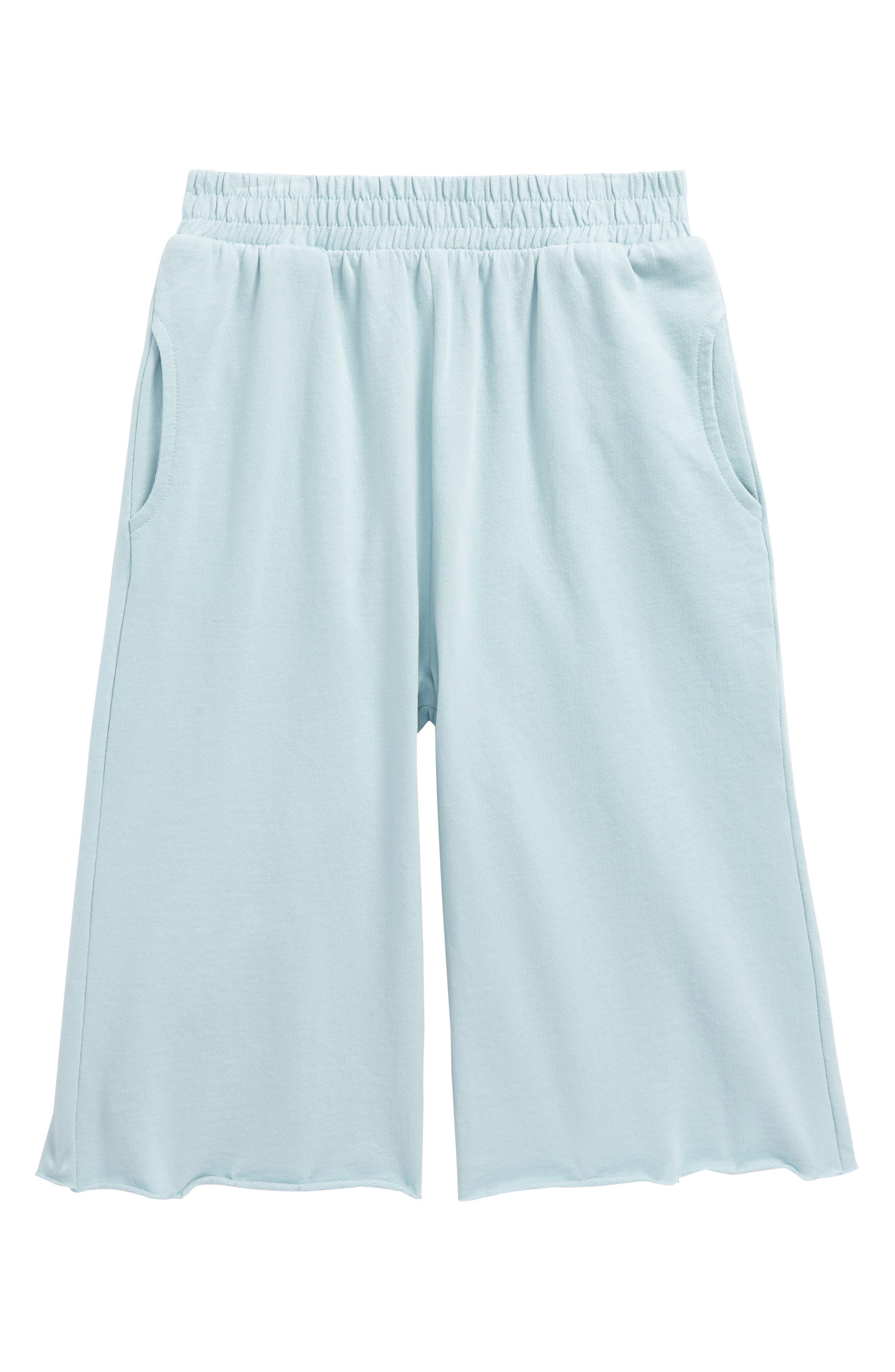 Wide Leg Sweatpants,                         Main,                         color, Blue Sterling