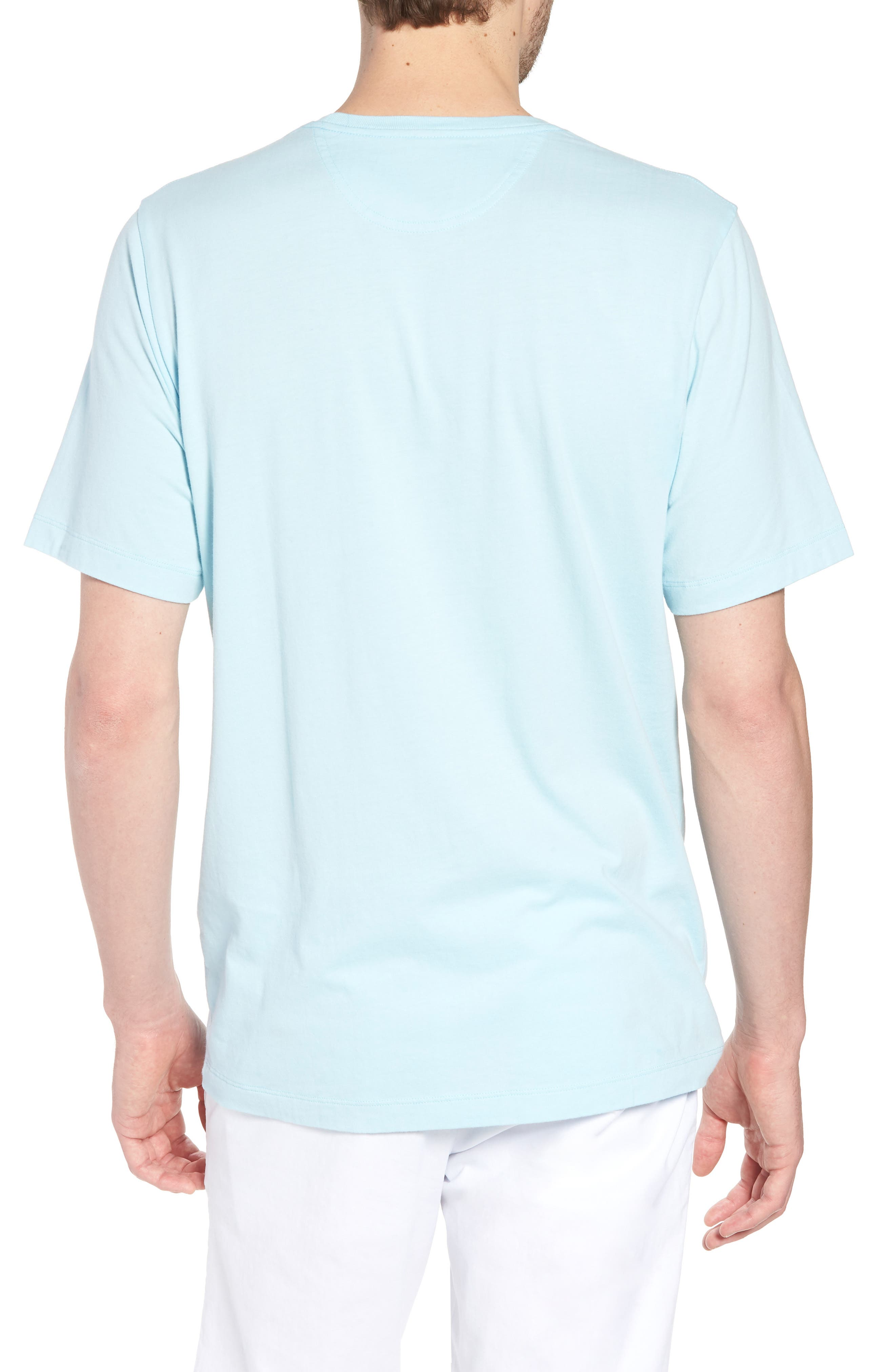 Brushed Pima Cotton T-Shirt,                             Alternate thumbnail 2, color,                             Blue Orydalis