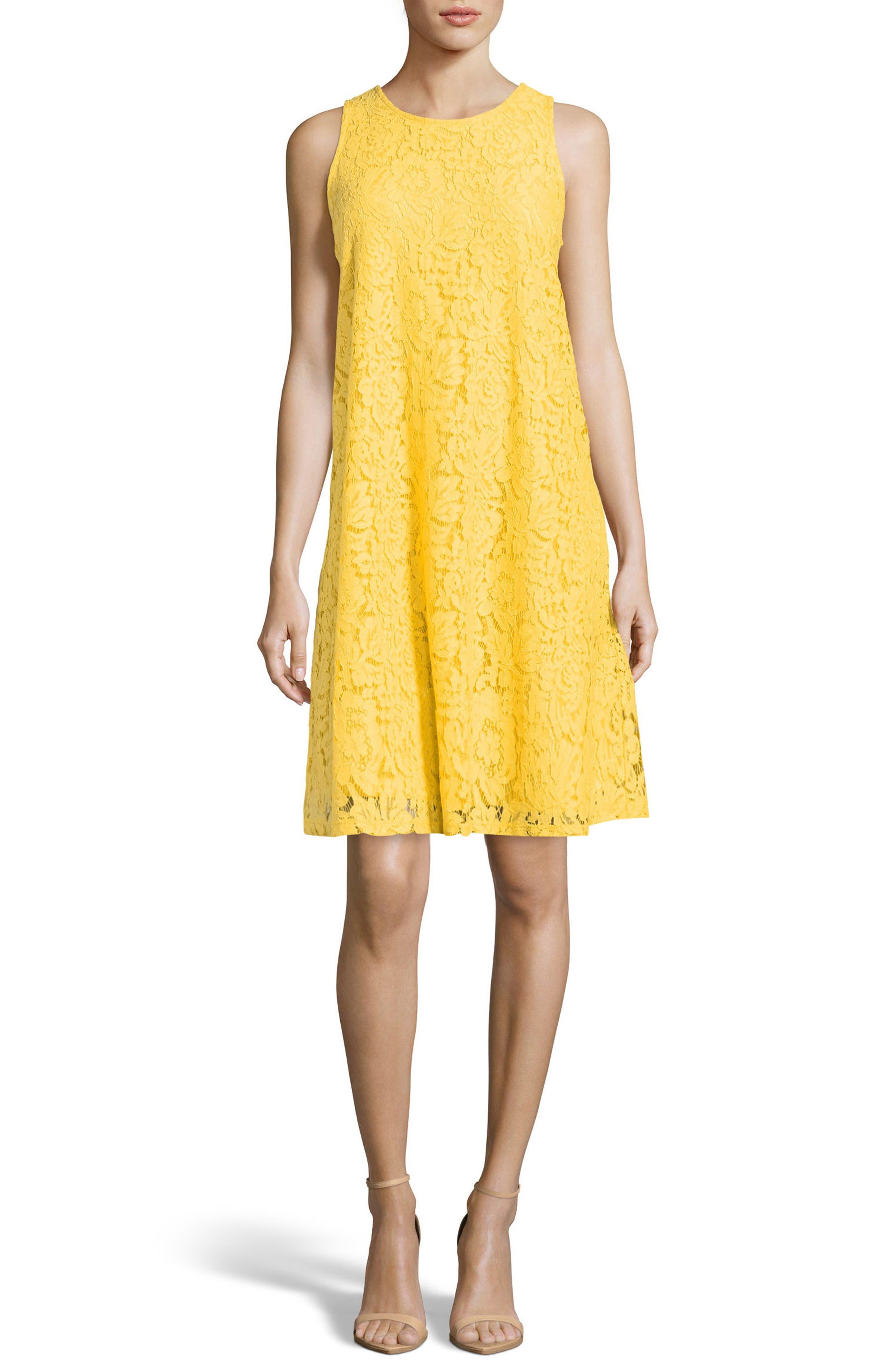 Lace A-Line Dress,                             Main thumbnail 1, color,                             Delightful Daisy