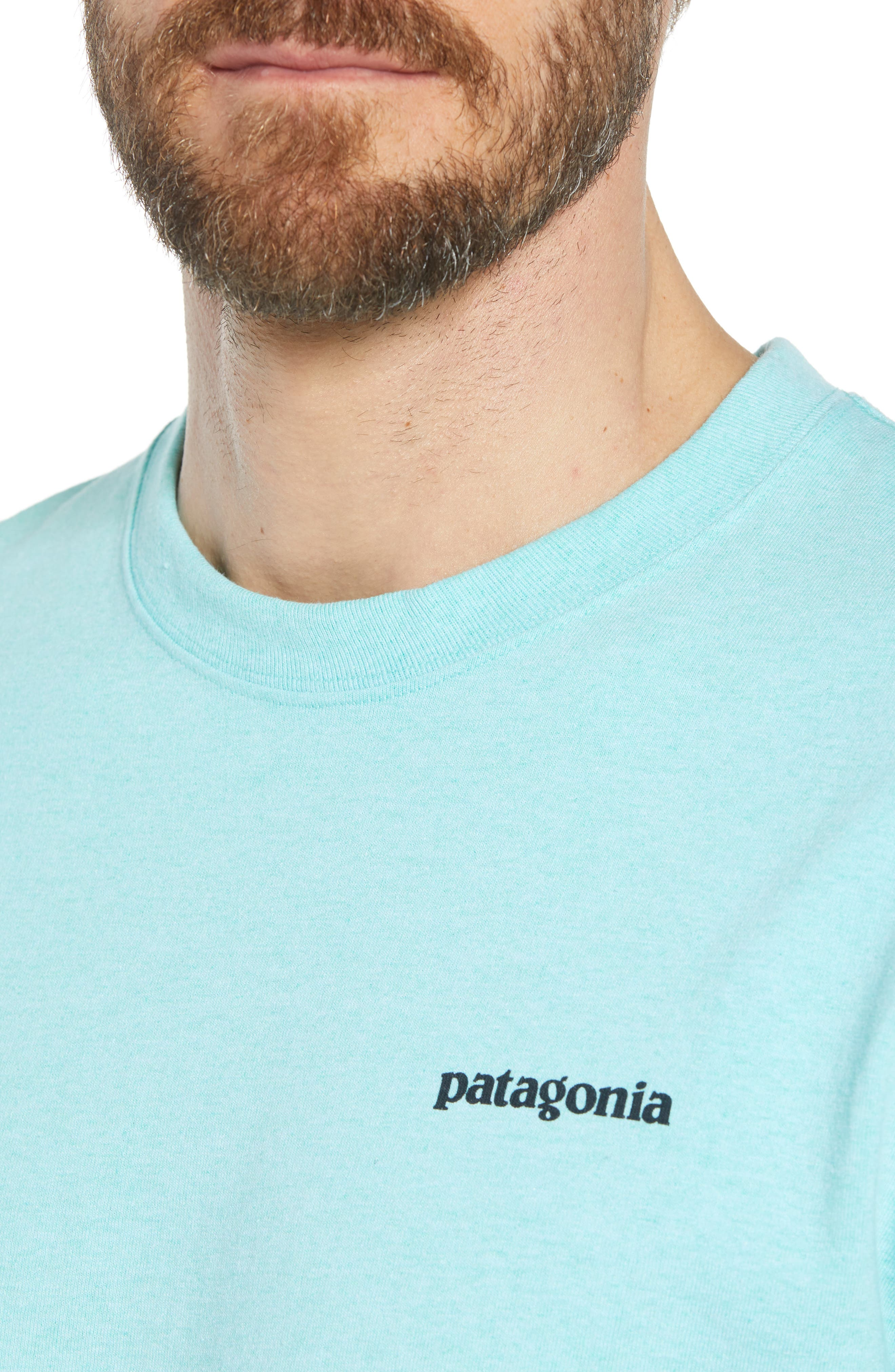 Fitz Roy Trout Crewneck T-Shirt,                             Alternate thumbnail 4, color,                             Bend Blue