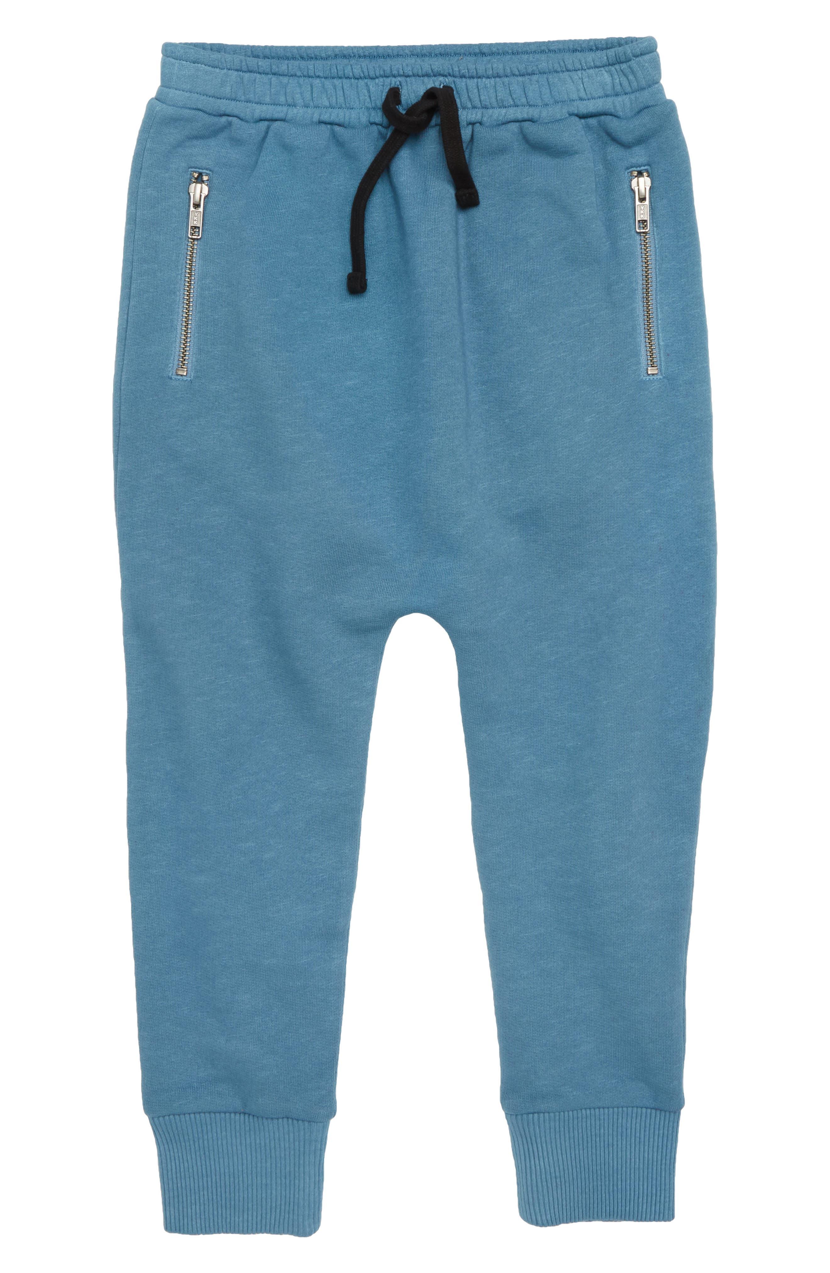 Zip Jogger Pants,                         Main,                         color, Blue Stellar