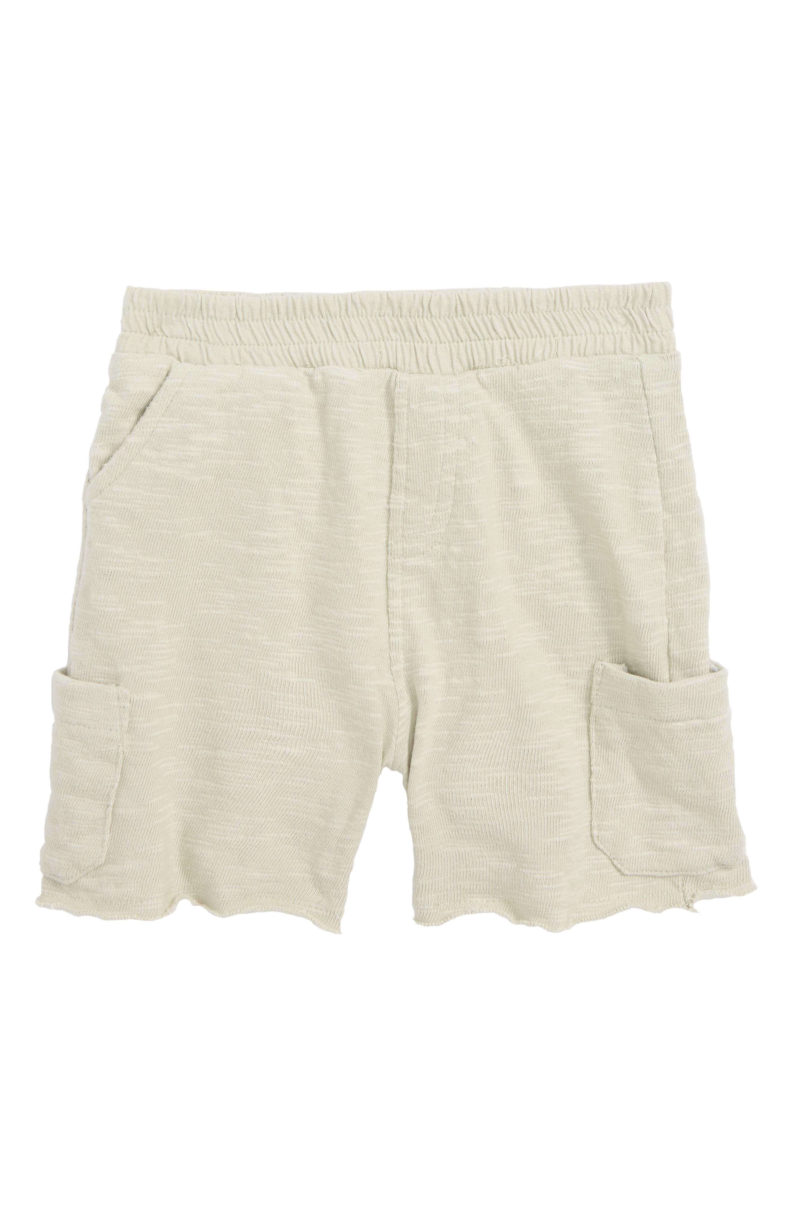 Asher Knit Cargo Shorts,                         Main,                         color, Grey