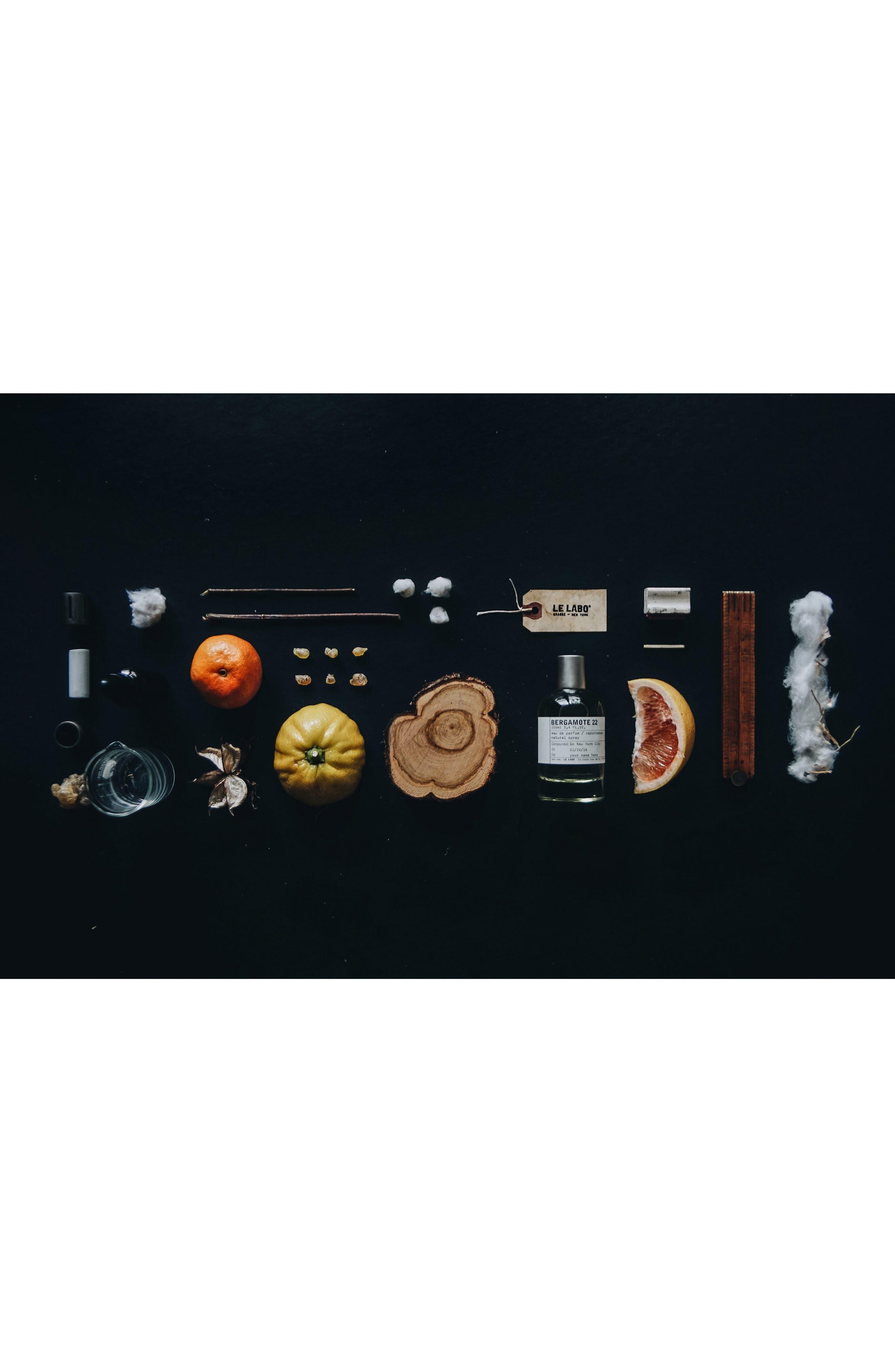 'Bergamote 22' Body Oil,                             Alternate thumbnail 2, color,                             No Color