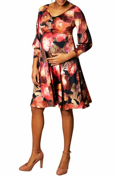Tiffany Rose Pixie A-Line Maternity Dress