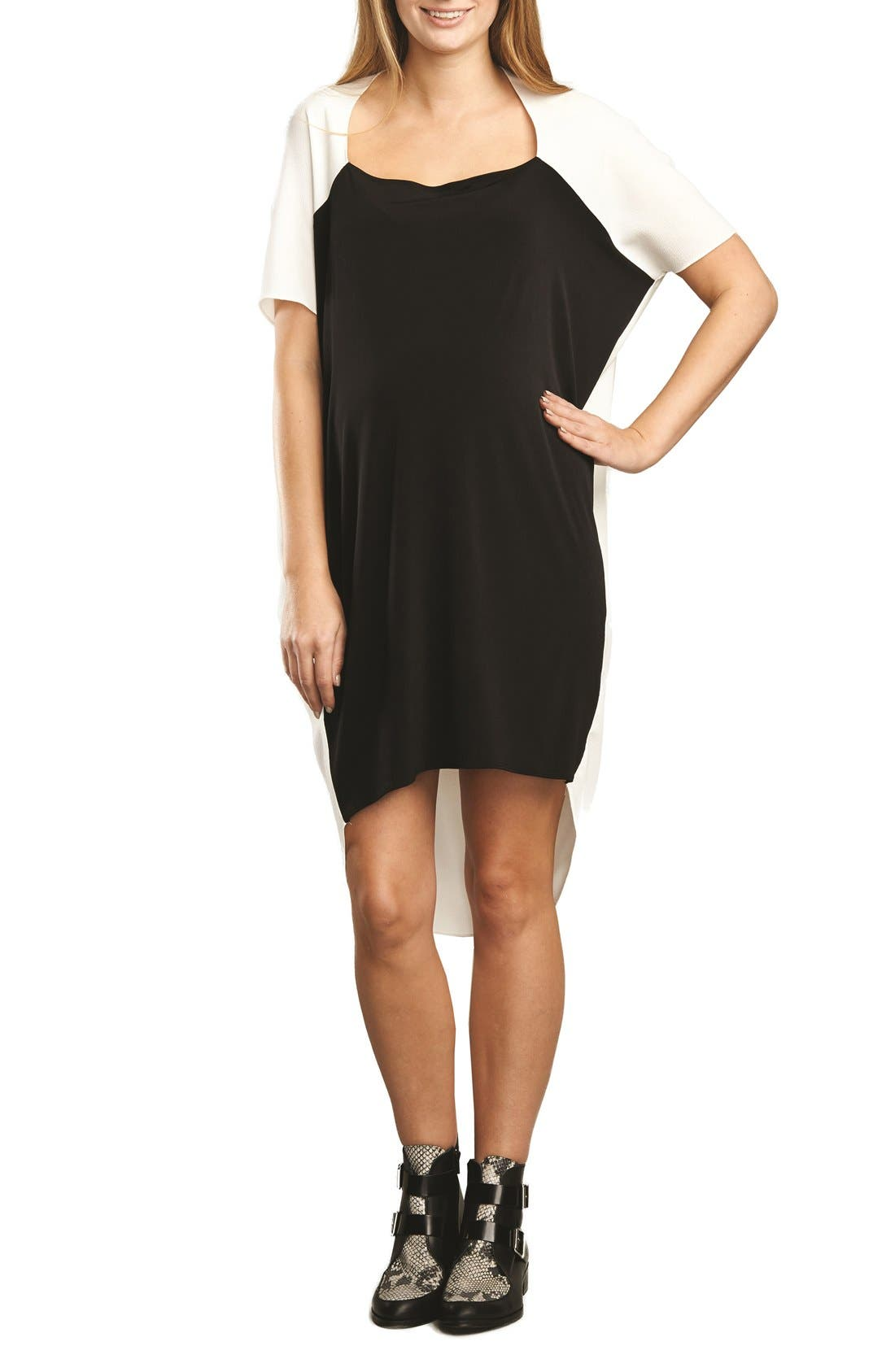 Alternate Image 1 Selected - The Urban Ma Maternity Shift Dress