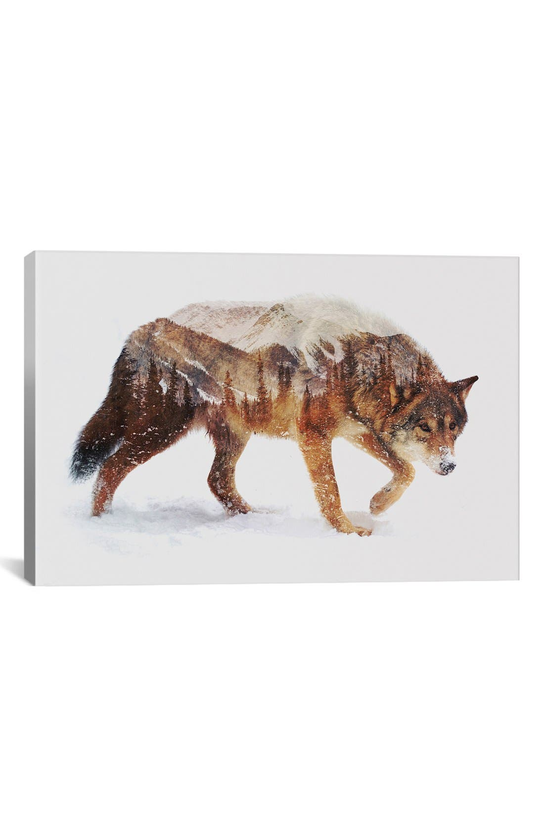 Alternate Image 1 Selected - iCanvas 'Arctic Wolf' Giclée Print Canvas Art