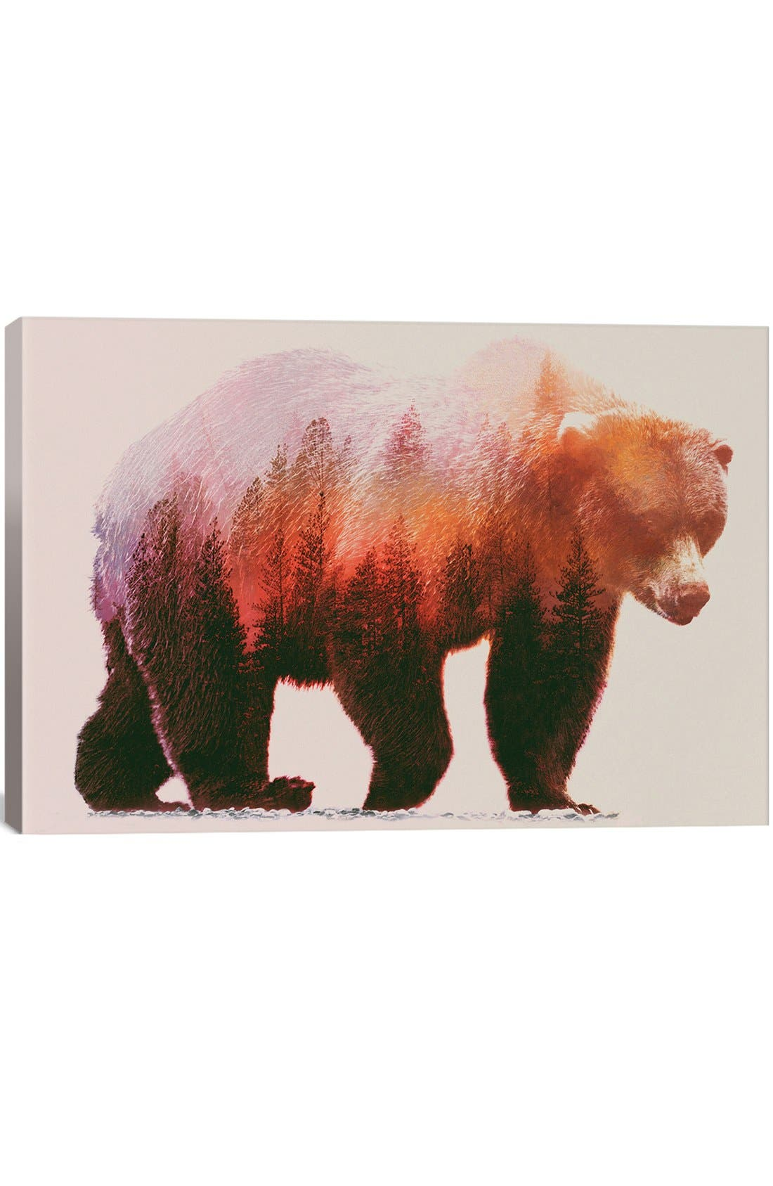Alternate Image 1 Selected - iCanvas 'Brown Bear' Giclée Print Canvas Art