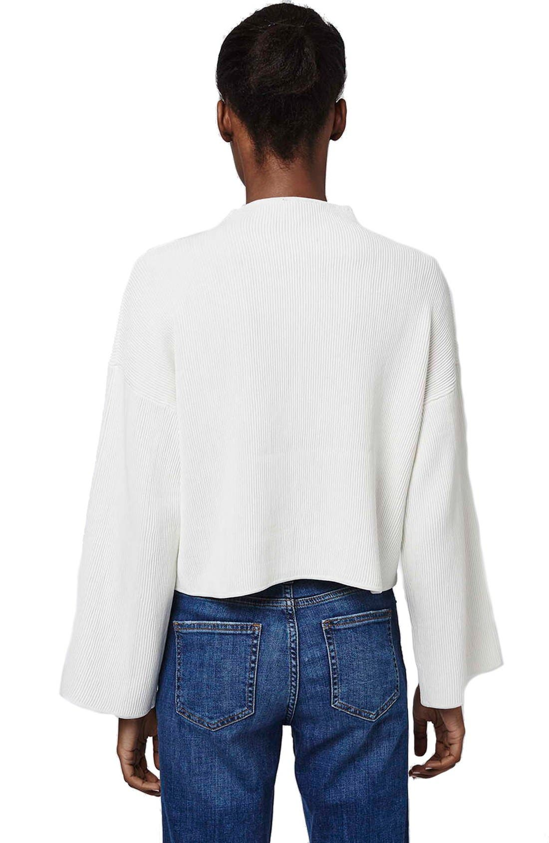 Alternate Image 3  - Topshop Funnel Neck Ribbed Crop Top