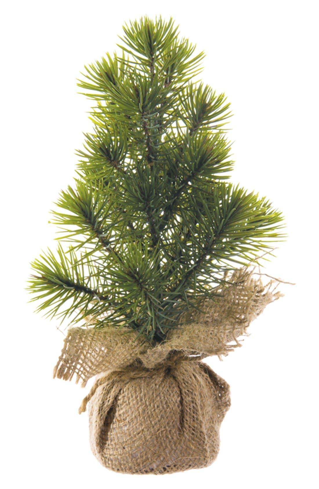 Mini Pine Tree,                         Main,                         color, Green