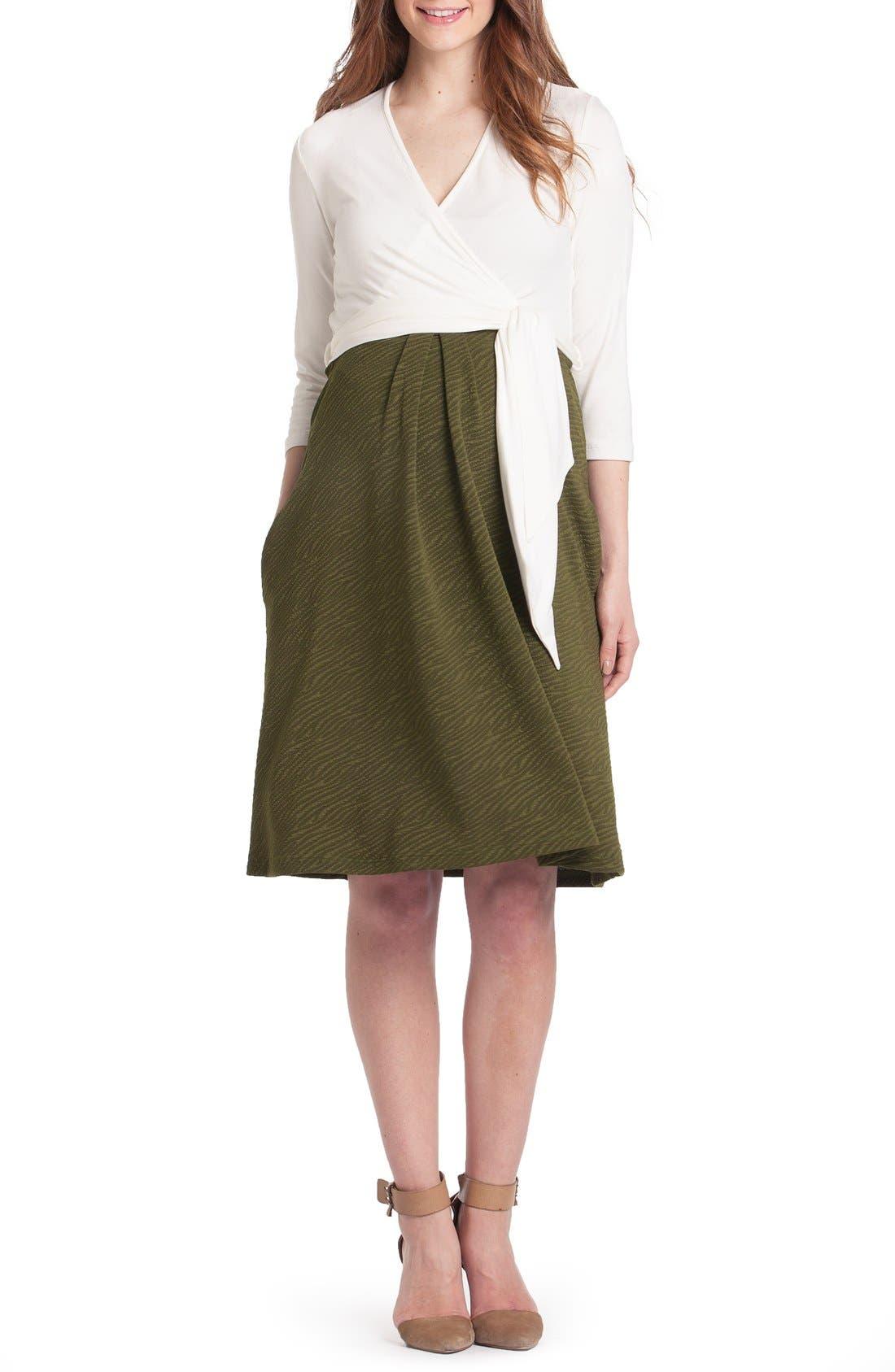 Alternate Image 1 Selected - Lilac Clothing Abby Maternity/Nursing Dress