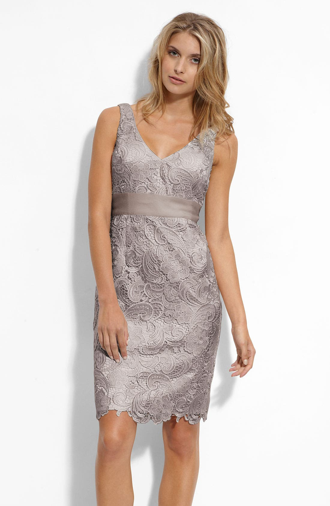 Alternate Image 1 Selected - Adrianna Papell V-Neck Lace Sheath Dress